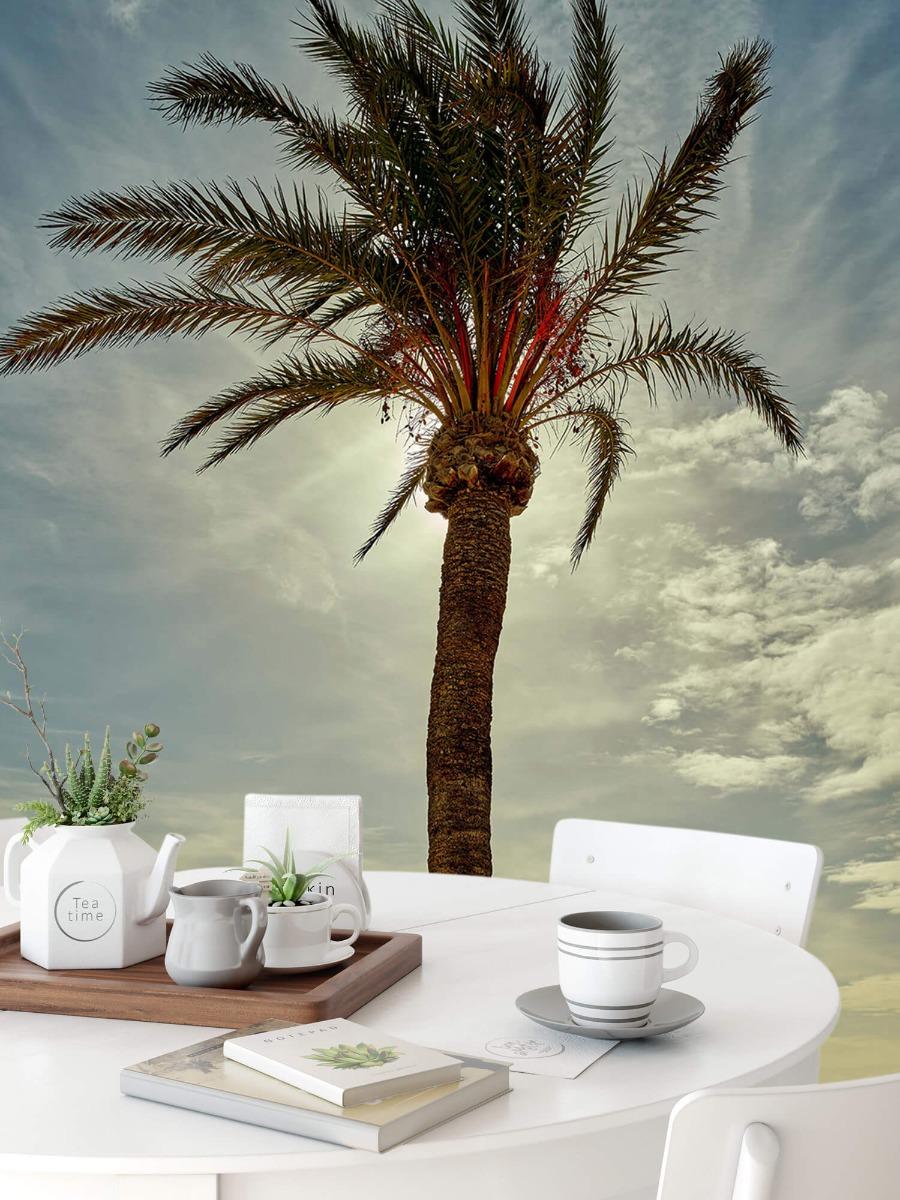 Palmbomen - Palmboom in de zon - Slaapkamer 9
