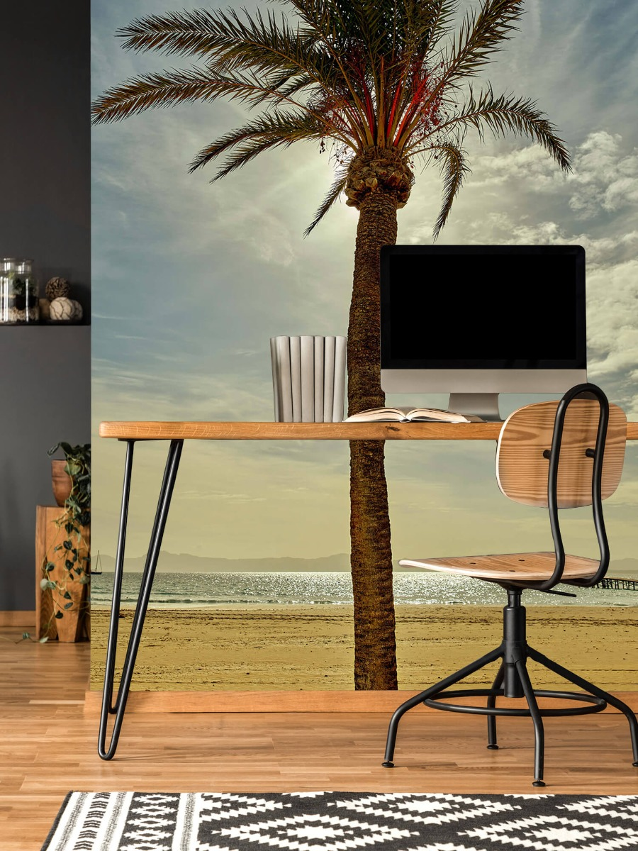 Palmbomen - Palmboom in de zon - Slaapkamer 11