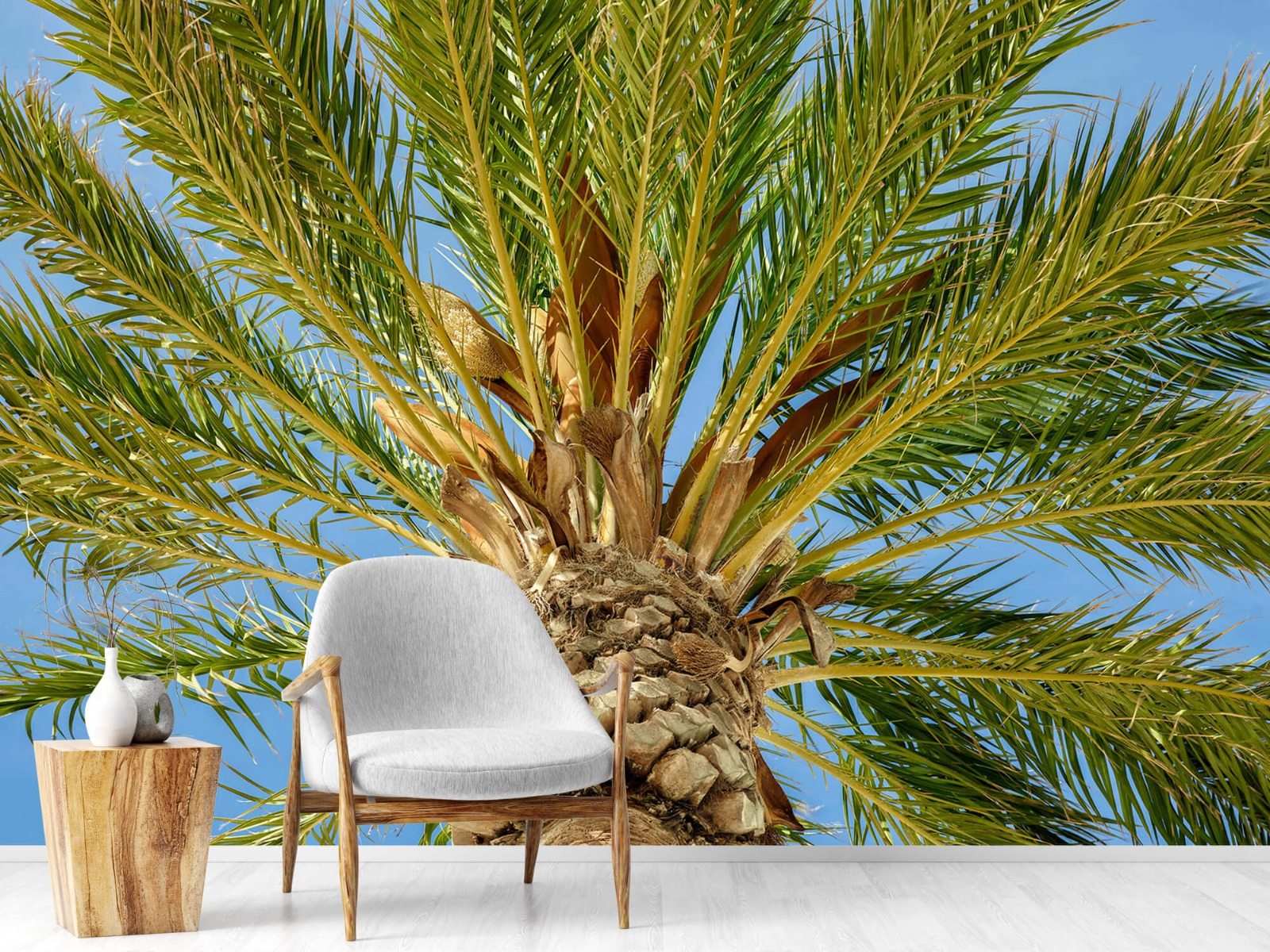Palmbomen - Tropische palmboom - Tienerkamer 18