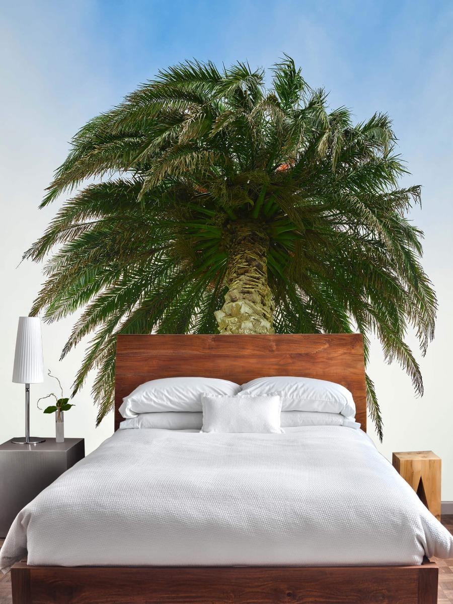 Palmbomen - Palm - Gang 3