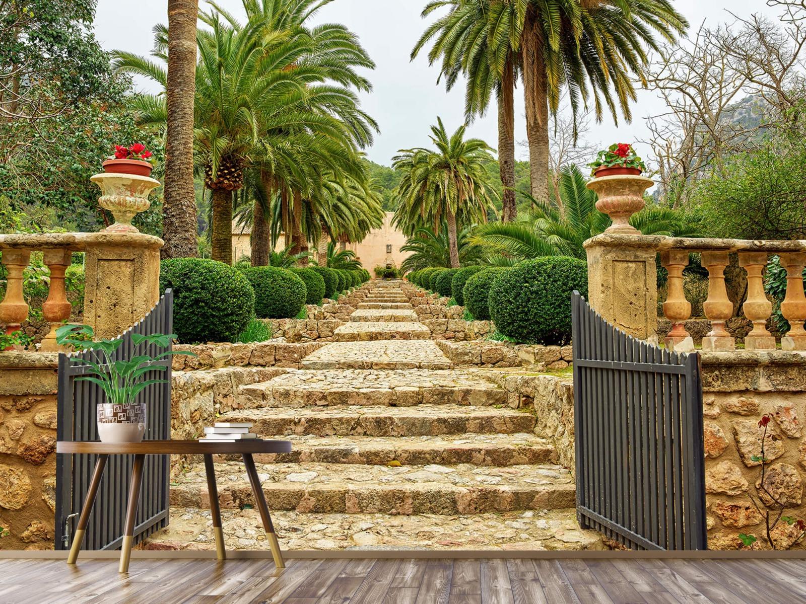 Palmbomen - Palmbomen langs stenen trap - Woonkamer 3