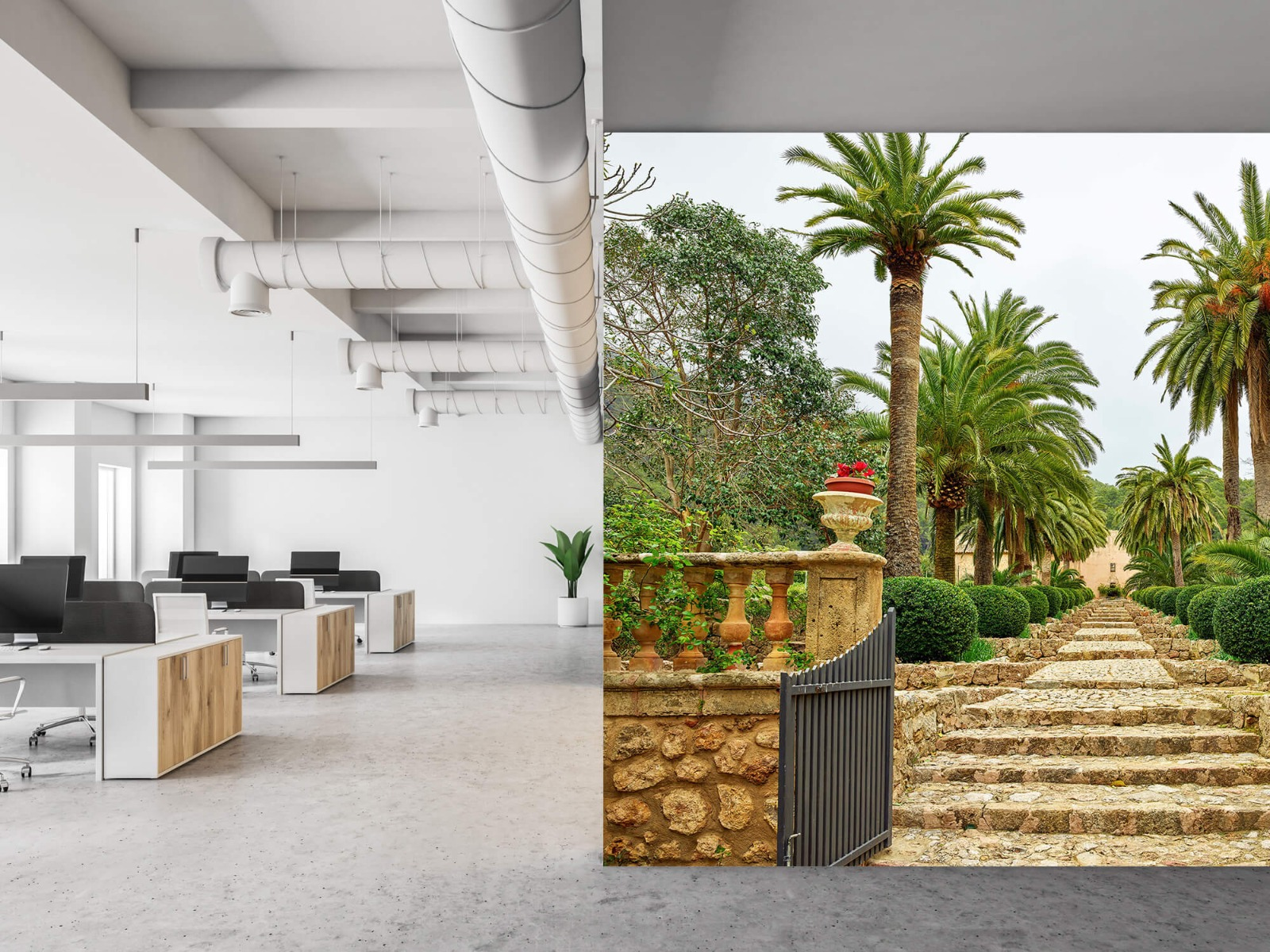 Palmbomen - Palmbomen langs stenen trap - Woonkamer 21