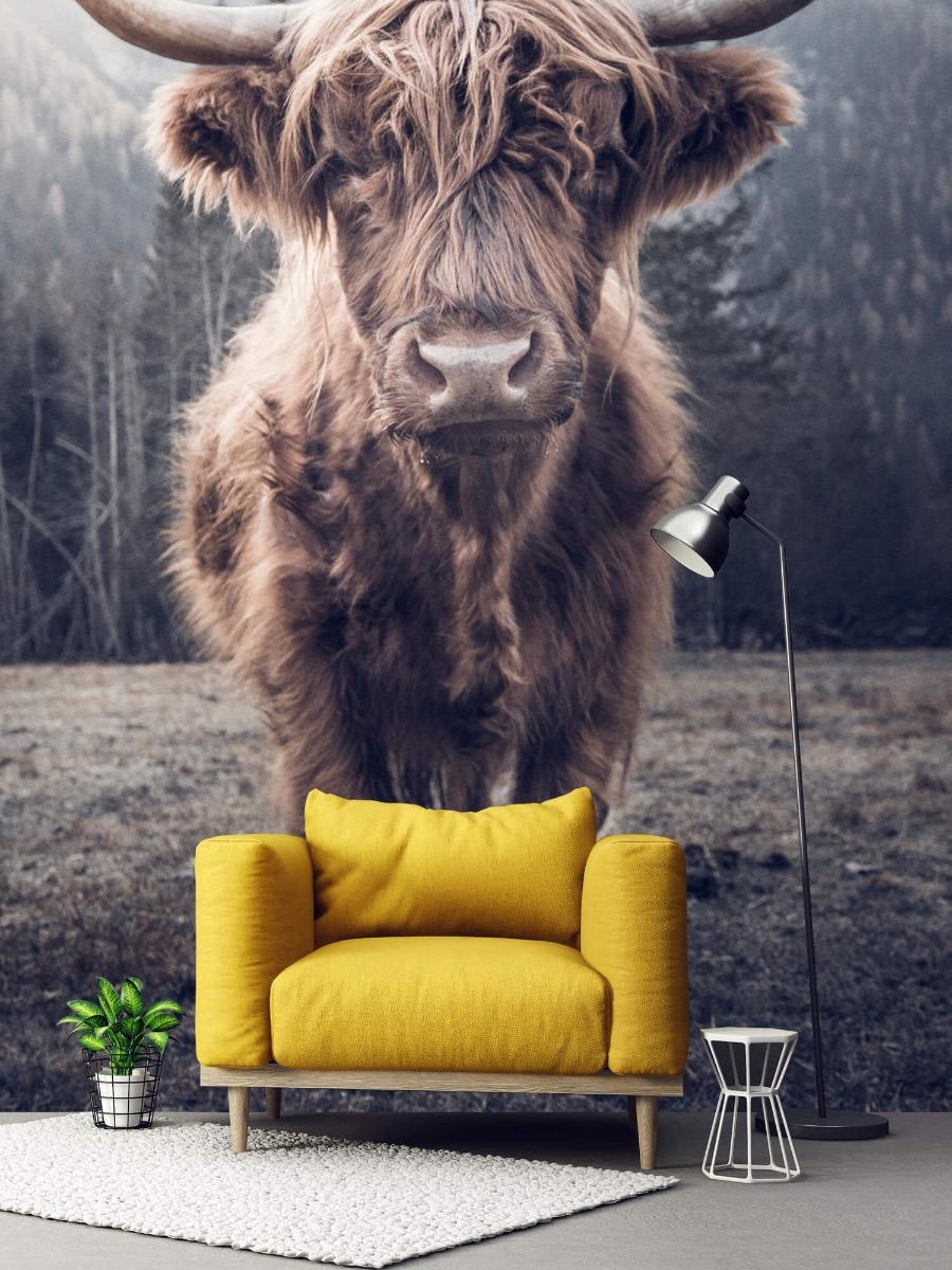 Hooglanders - Schotse hooglander bij het bos - Hal 1