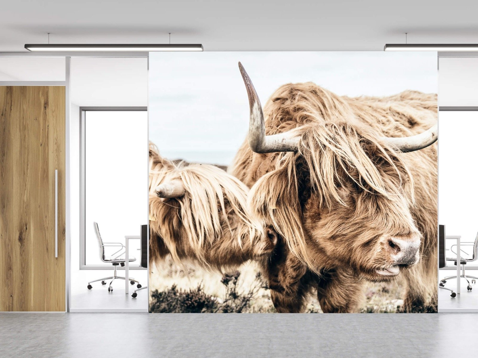 Hooglanders - Twee Schotse hooglanders - Slaapkamer 12