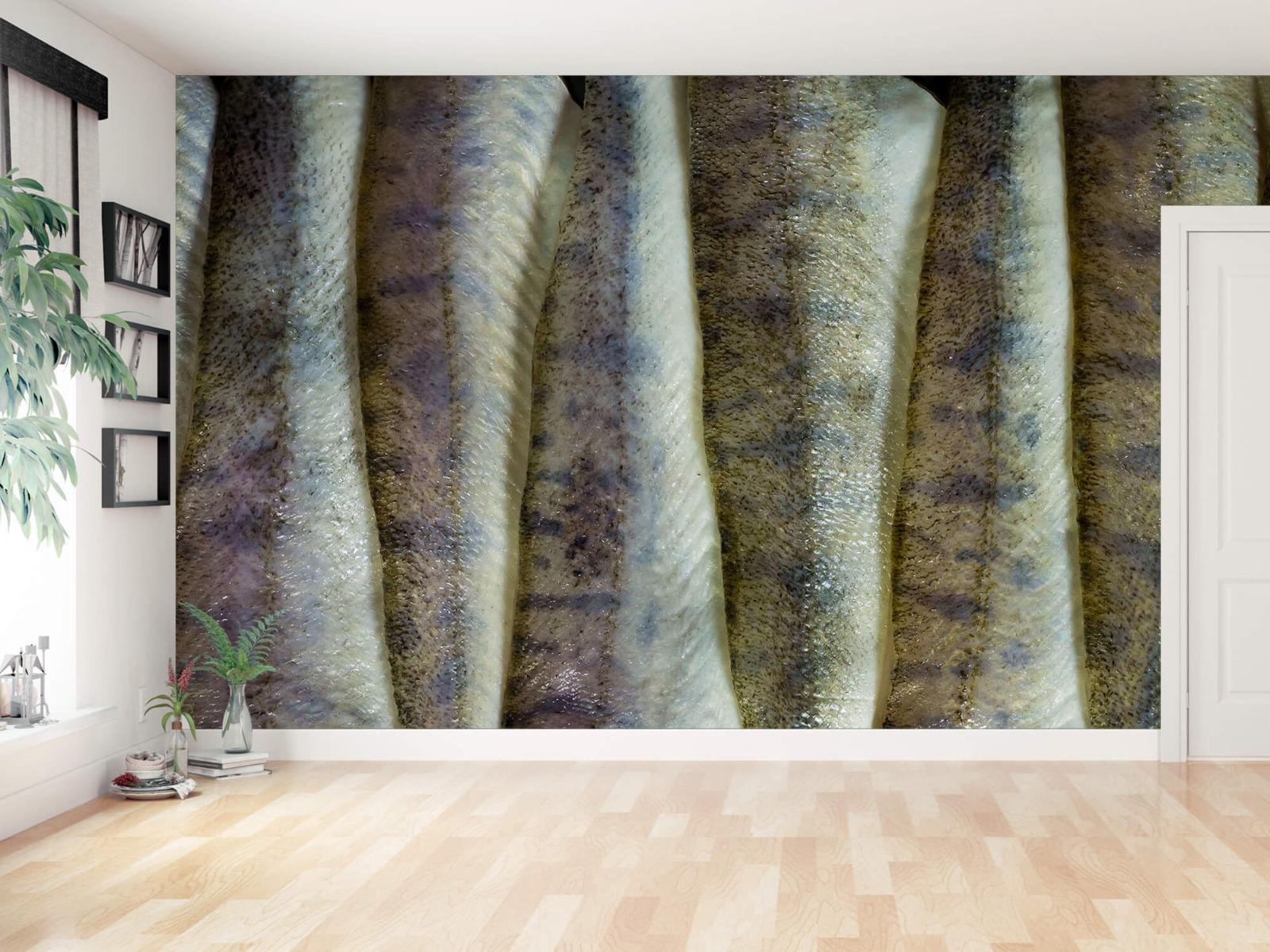 Overige - Vissen op een rij - Keuken 11
