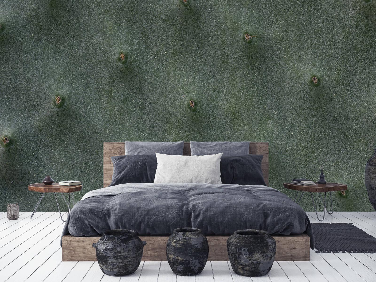 Bladeren - Close-up cactus - Slaapkamer 5
