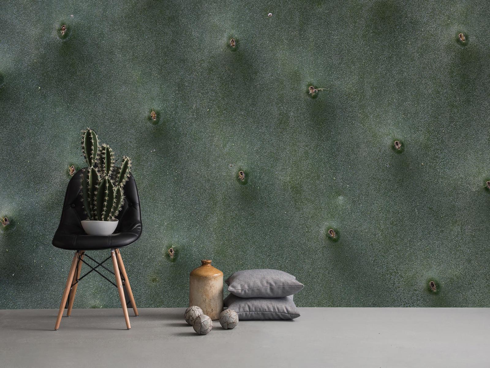 Bladeren - Close-up cactus - Slaapkamer 13