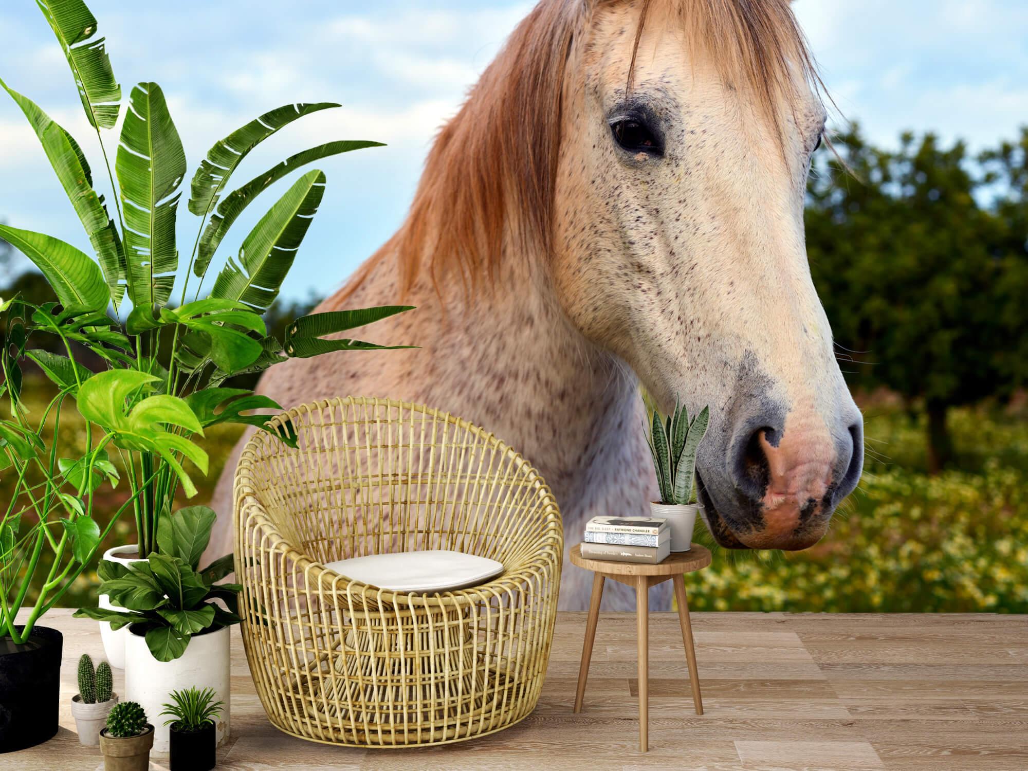 Paarden - Paard in bloemenweide - Kinderkamer 1
