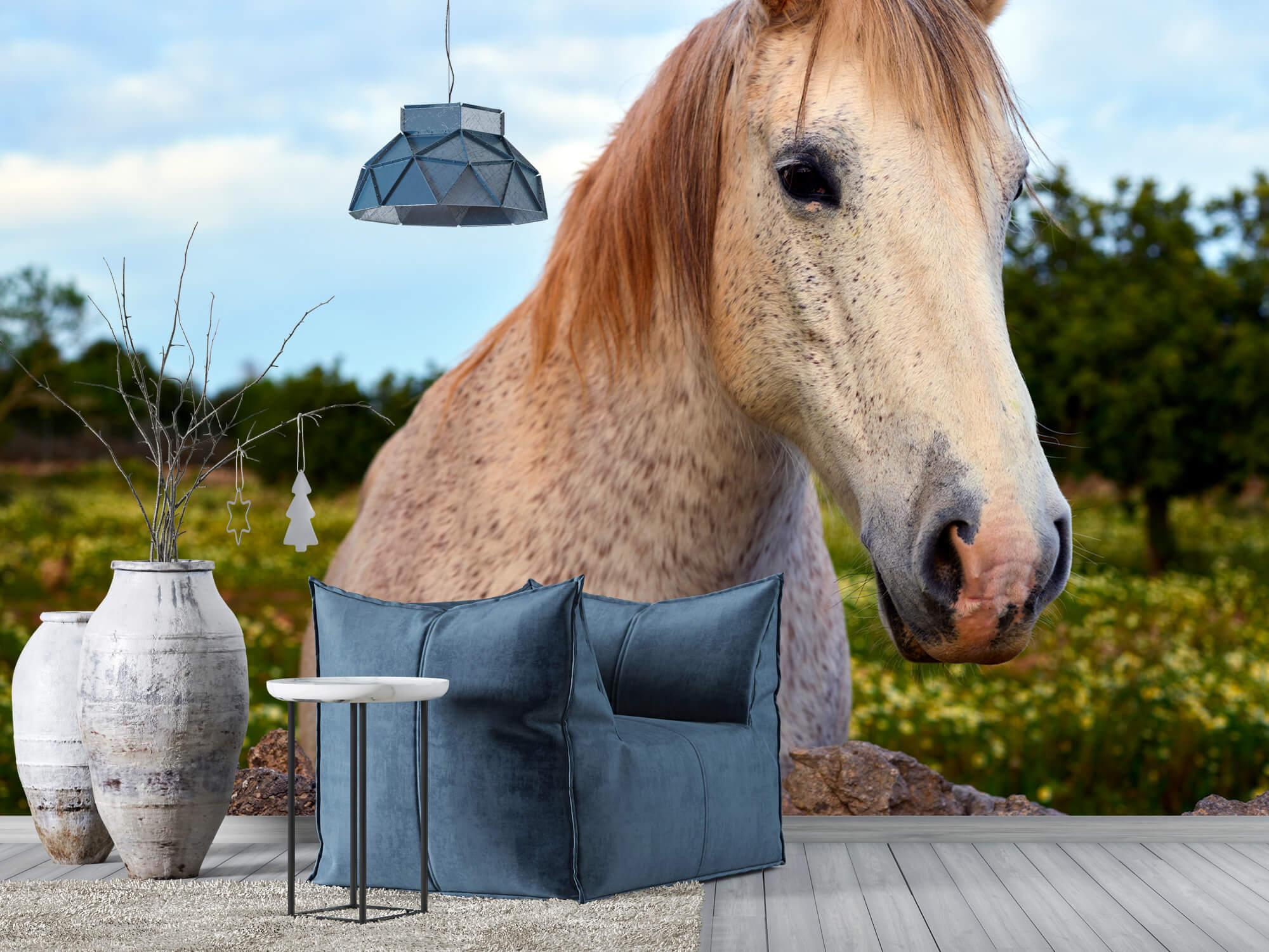 Paarden - Paard in bloemenweide - Kinderkamer 4