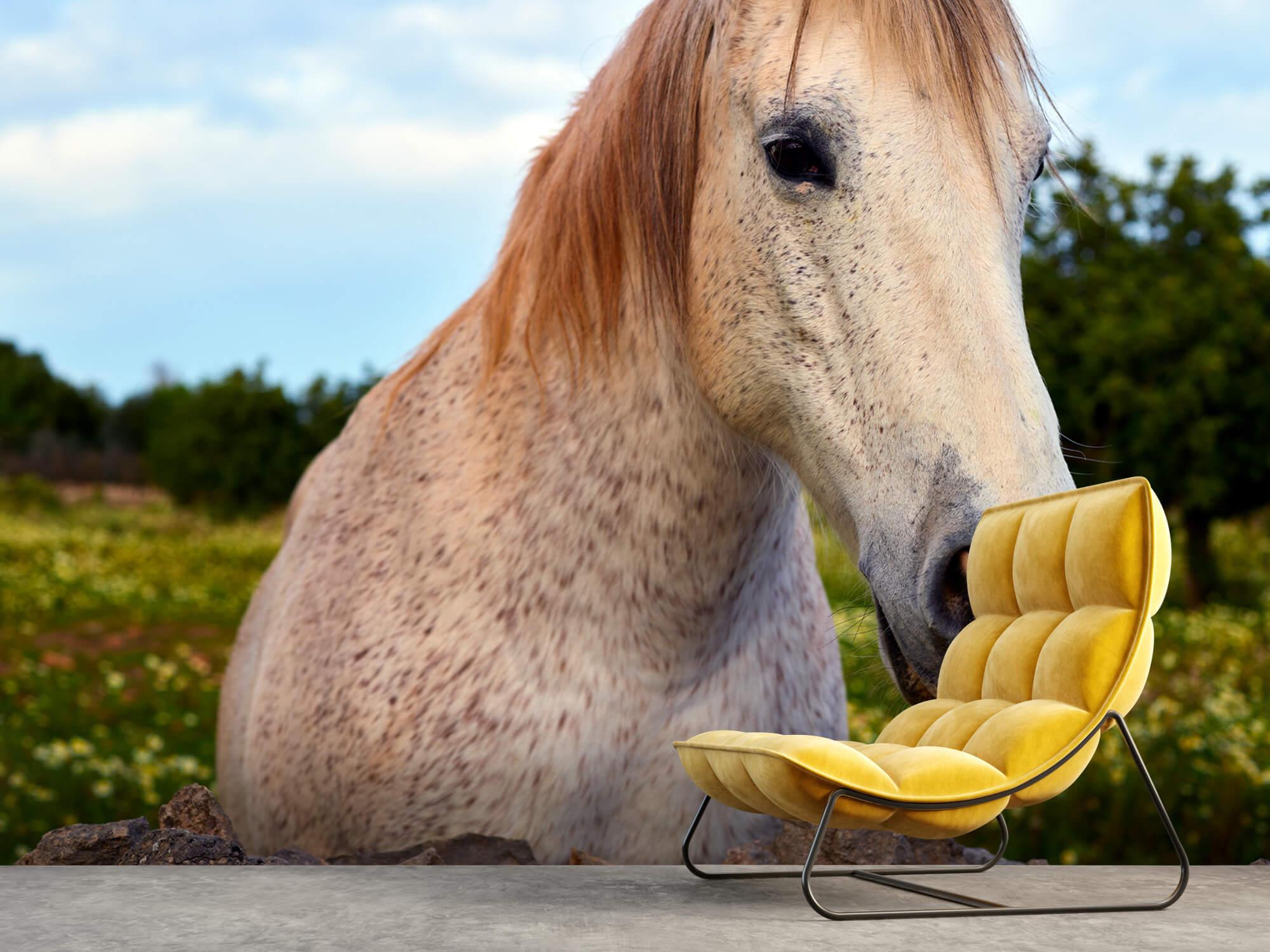 Paarden - Paard in bloemenweide - Kinderkamer 5