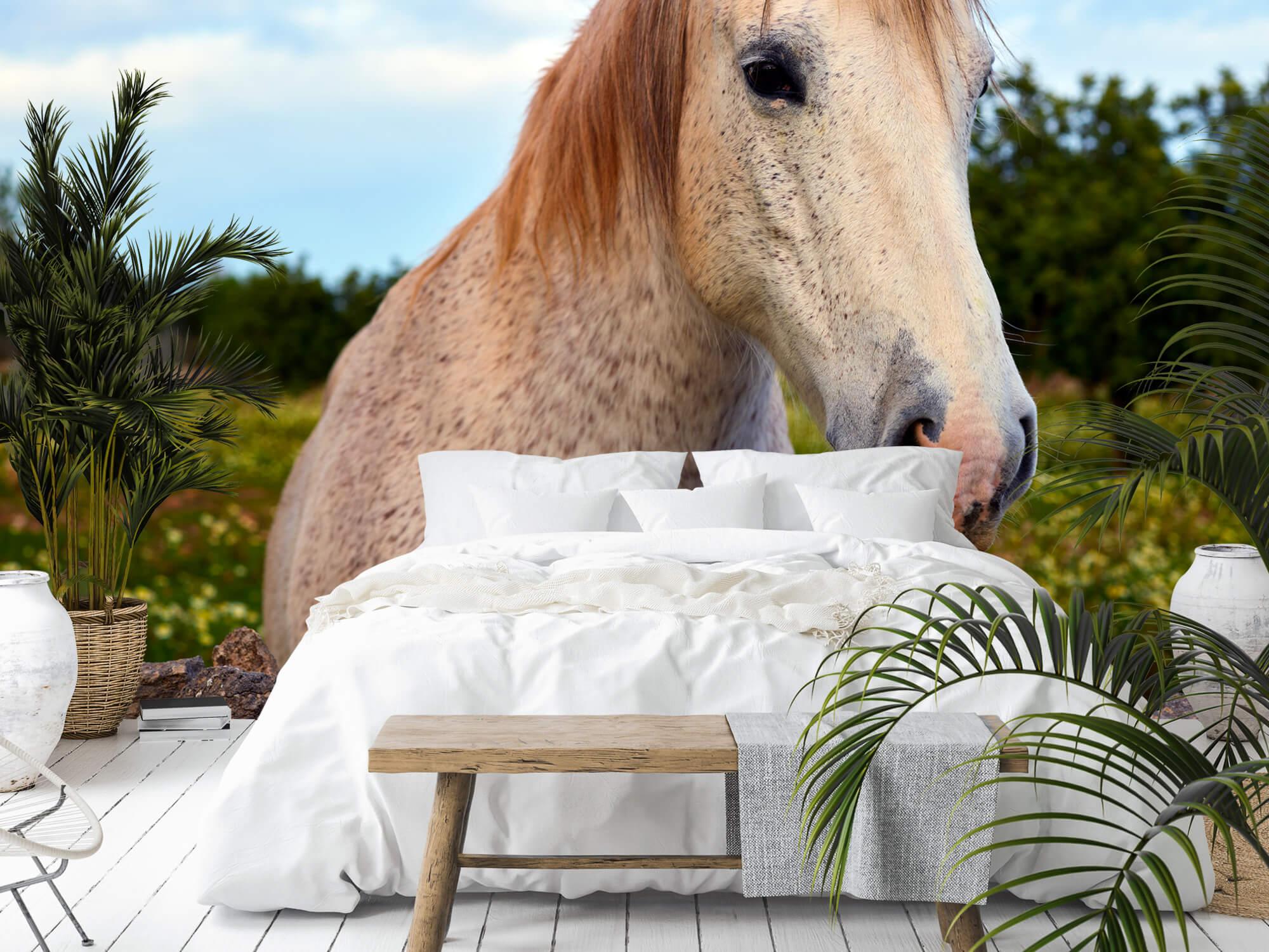 Paarden - Paard in bloemenweide - Kinderkamer 6