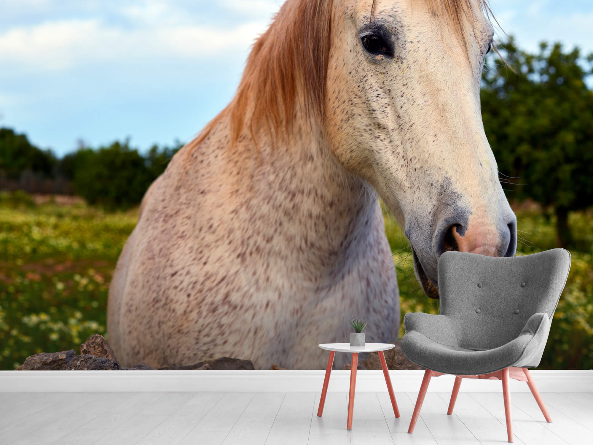 Paarden - Paard in bloemenweide - Kinderkamer 7