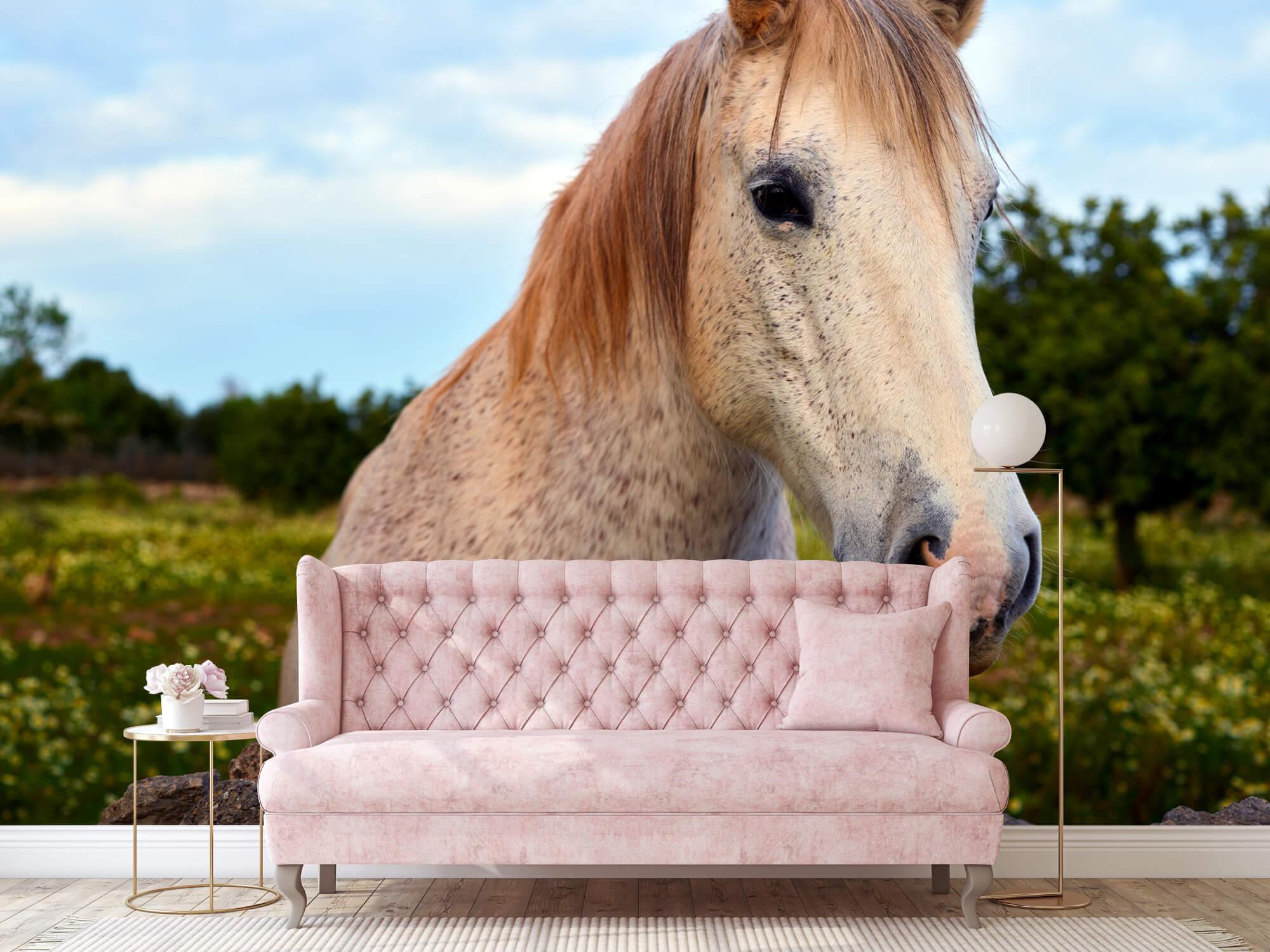 Paarden - Paard in bloemenweide - Kinderkamer 9