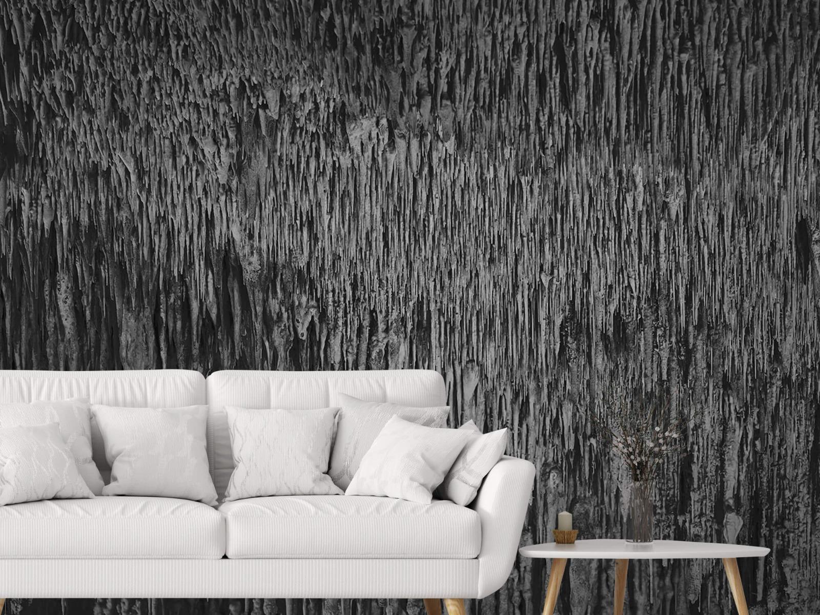Zwart Wit behang - Druipstenen - Kantoor 3