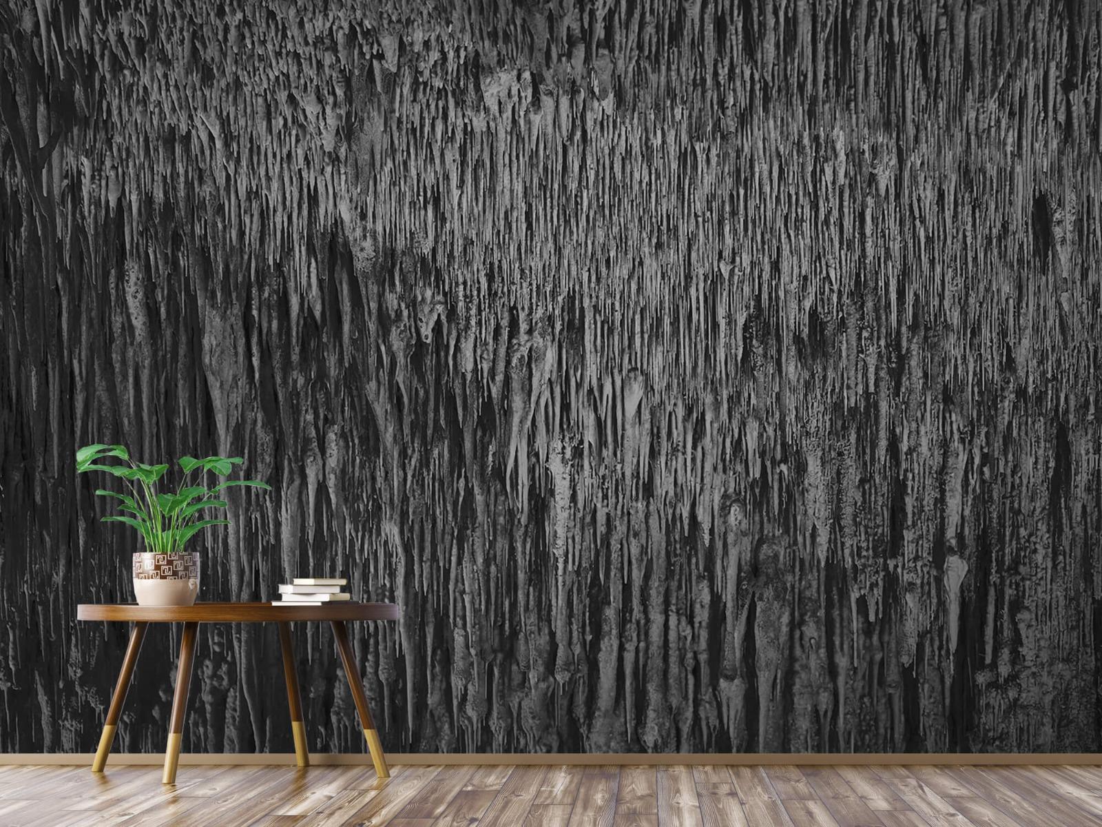 Zwart Wit behang - Druipstenen - Kantoor 4