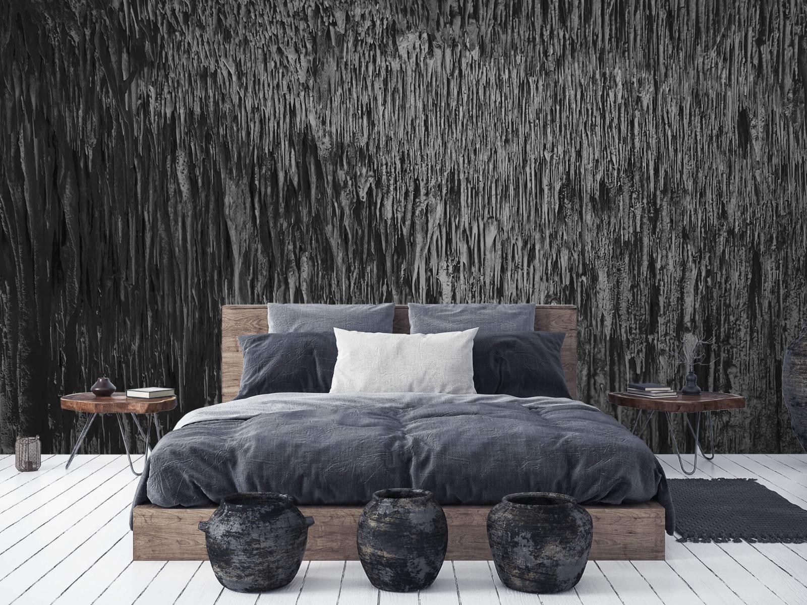 Zwart Wit behang - Druipstenen - Kantoor 6