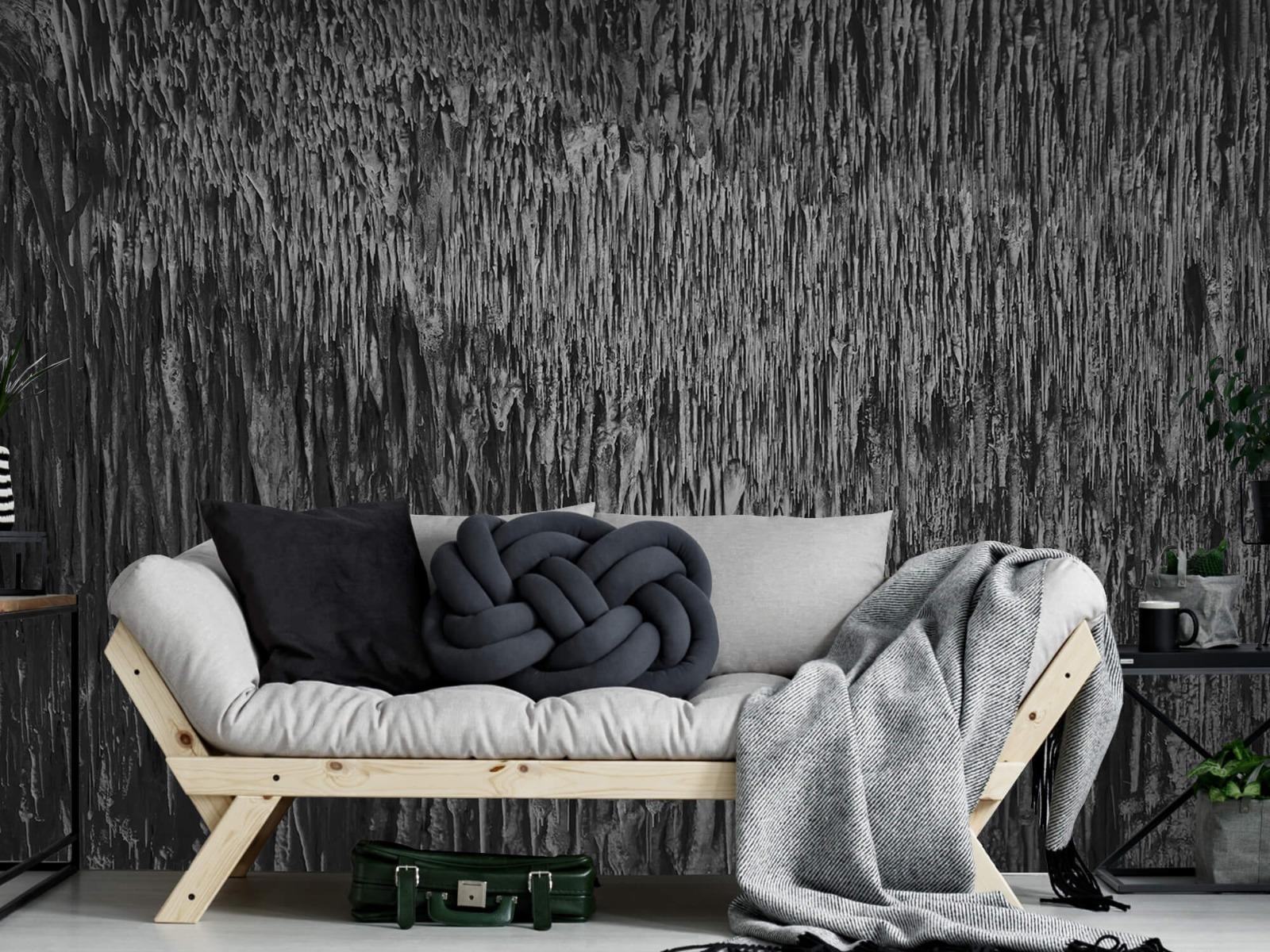 Zwart Wit behang - Druipstenen - Kantoor 1