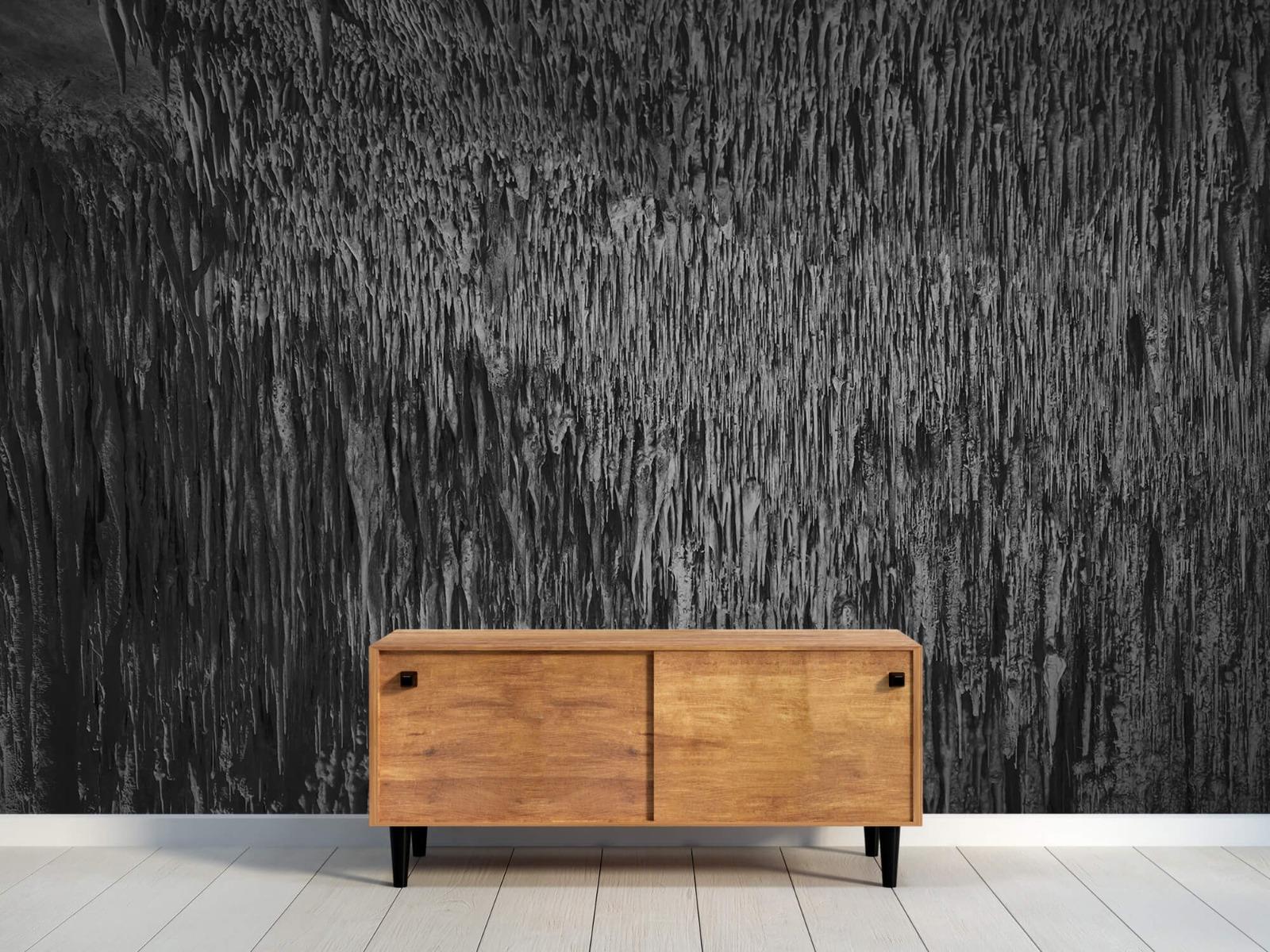 Zwart Wit behang - Druipstenen - Kantoor 9