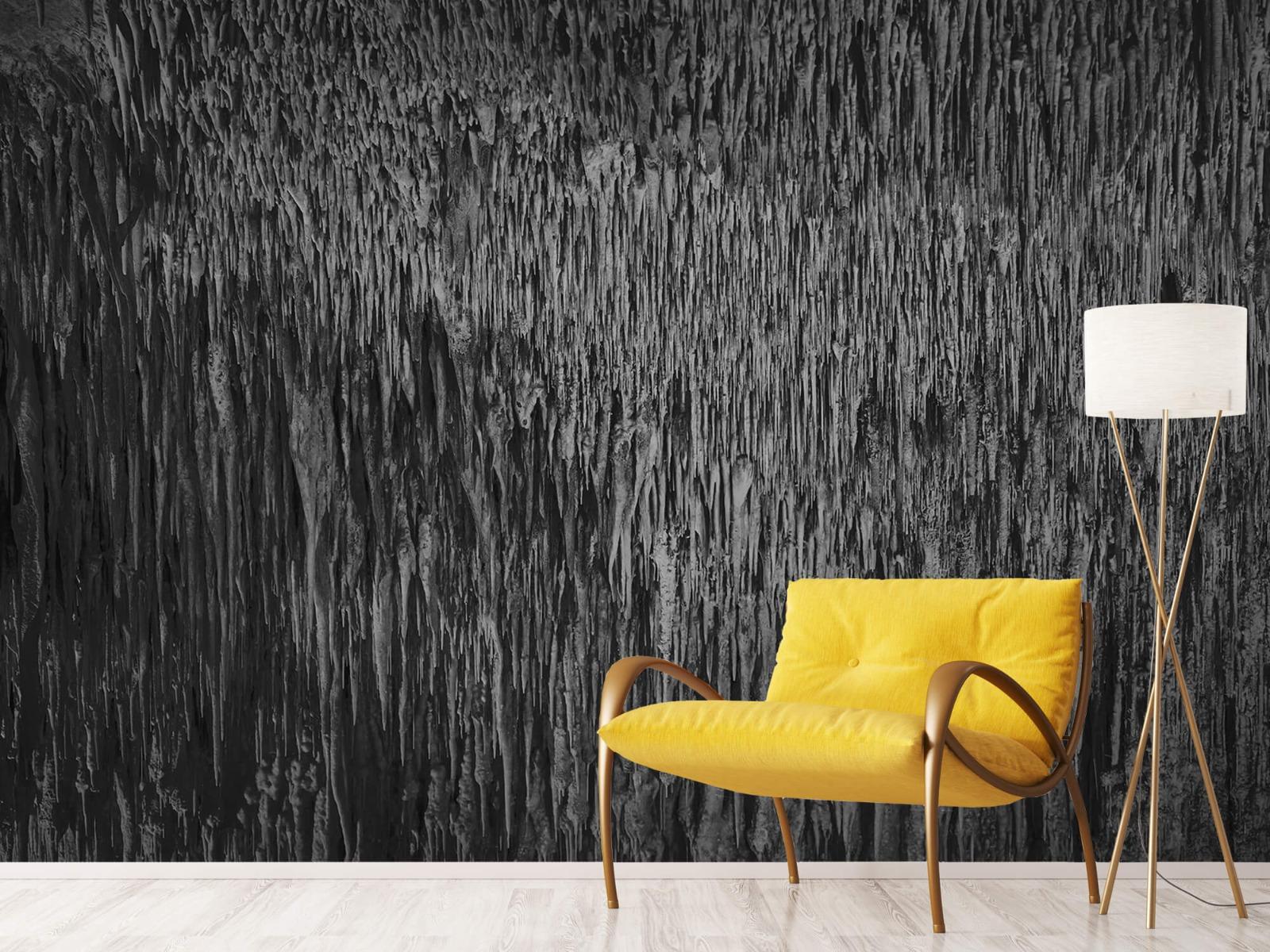 Zwart Wit behang - Druipstenen - Kantoor 10