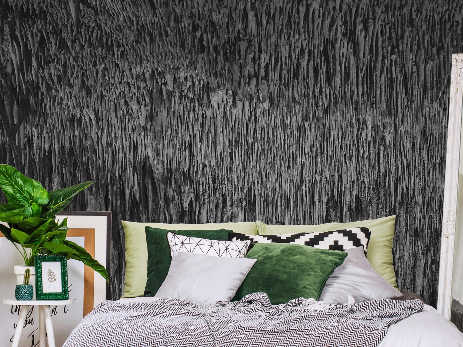 Zwart Wit behang - Druipstenen - Kantoor 12