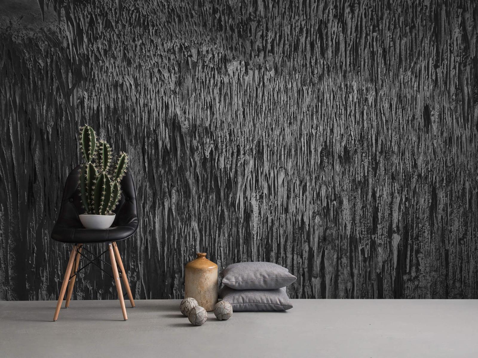 Zwart Wit behang - Druipstenen - Kantoor 13