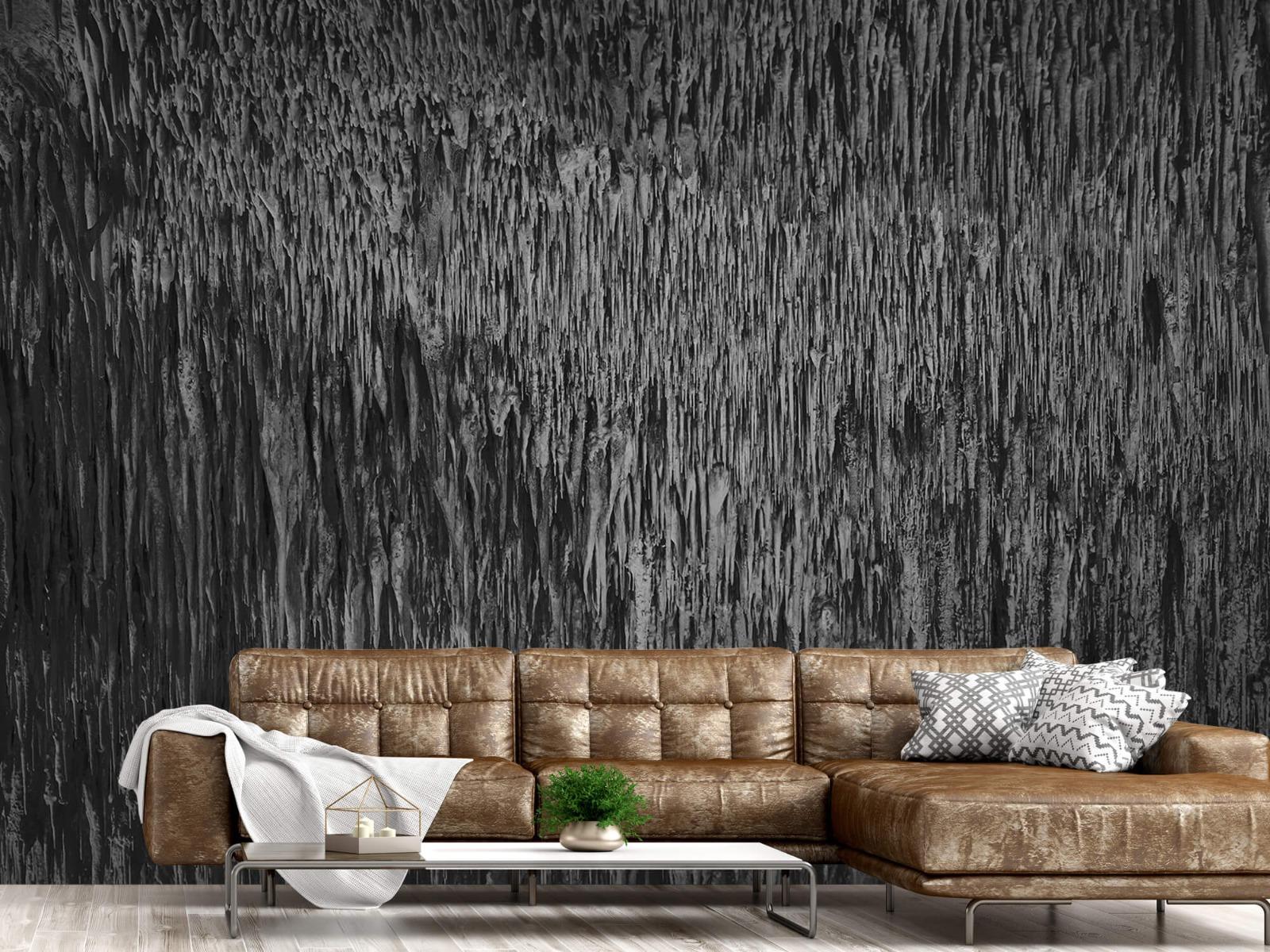Zwart Wit behang - Druipstenen - Kantoor 14