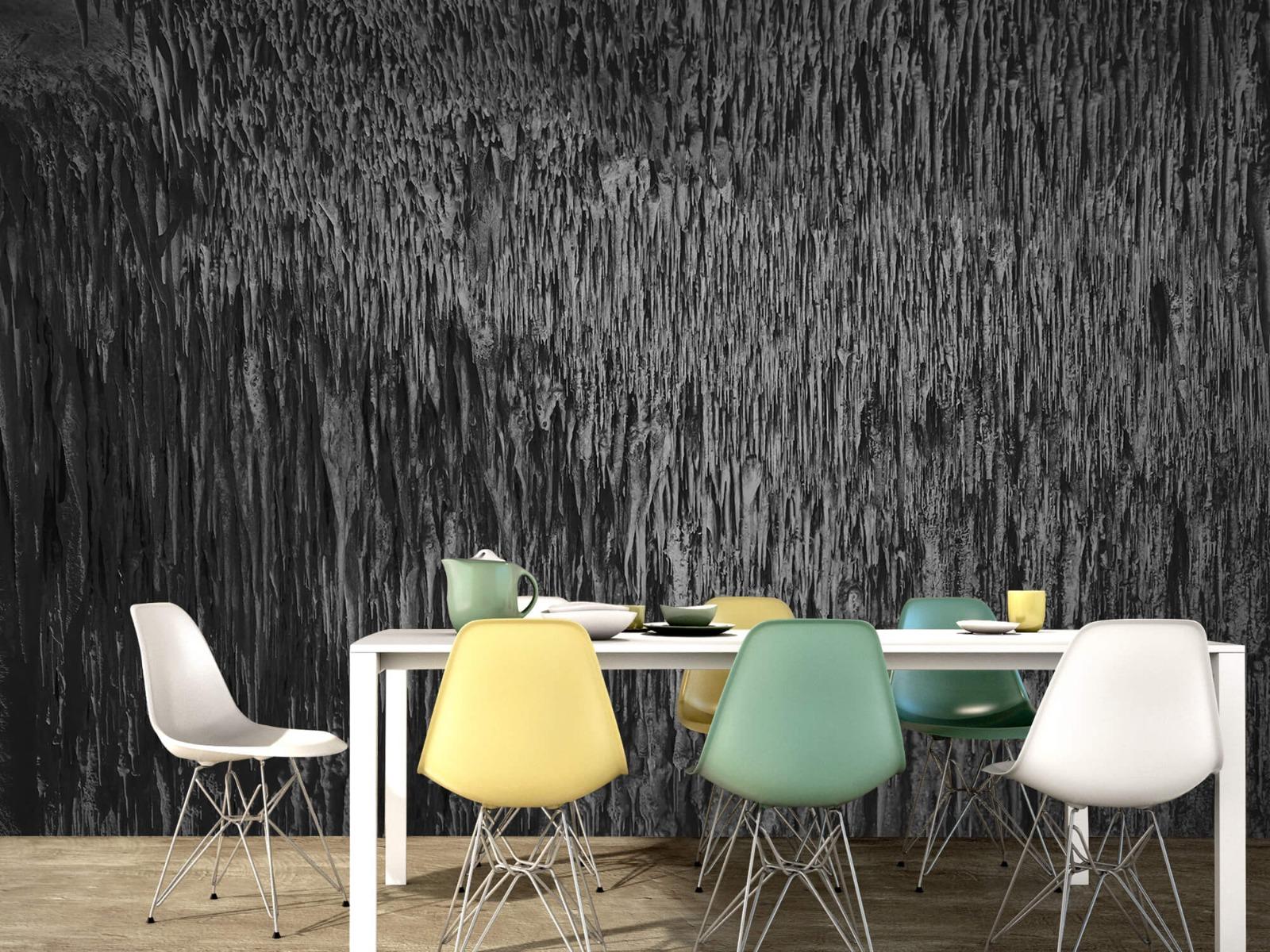 Zwart Wit behang - Druipstenen - Kantoor 15