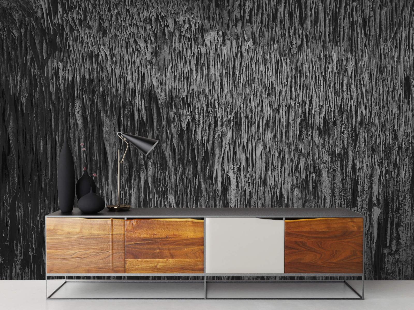 Zwart Wit behang - Druipstenen - Kantoor 16
