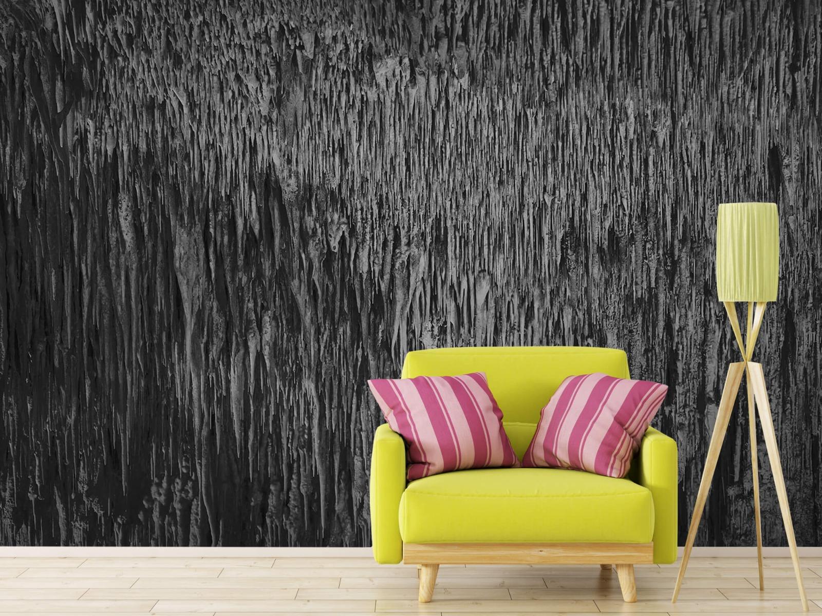 Zwart Wit behang - Druipstenen - Kantoor 17