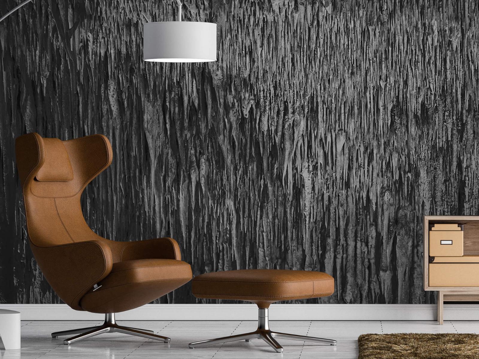 Zwart Wit behang - Druipstenen - Kantoor 19