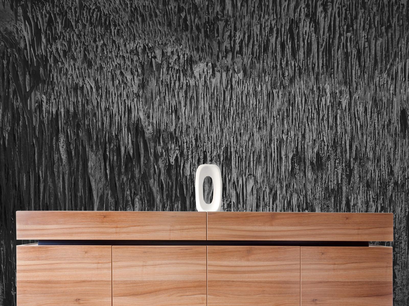 Zwart Wit behang - Druipstenen - Kantoor 20