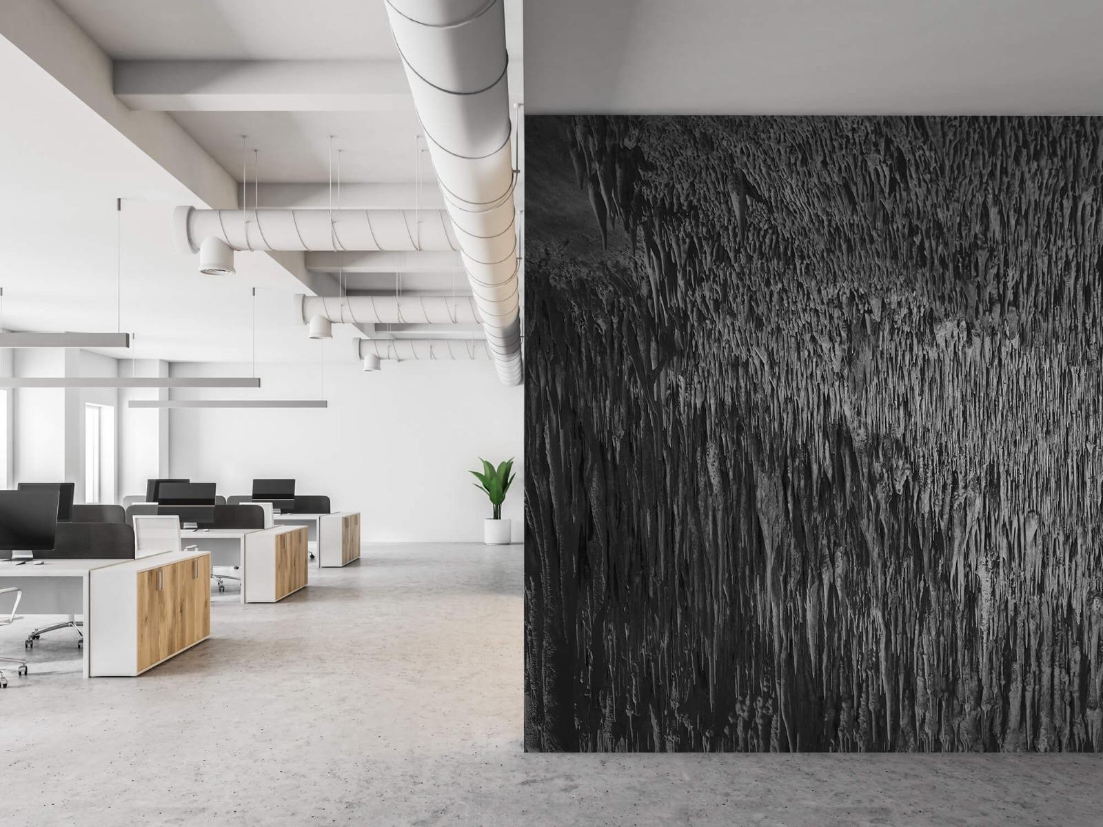 Zwart Wit behang - Druipstenen - Kantoor 21