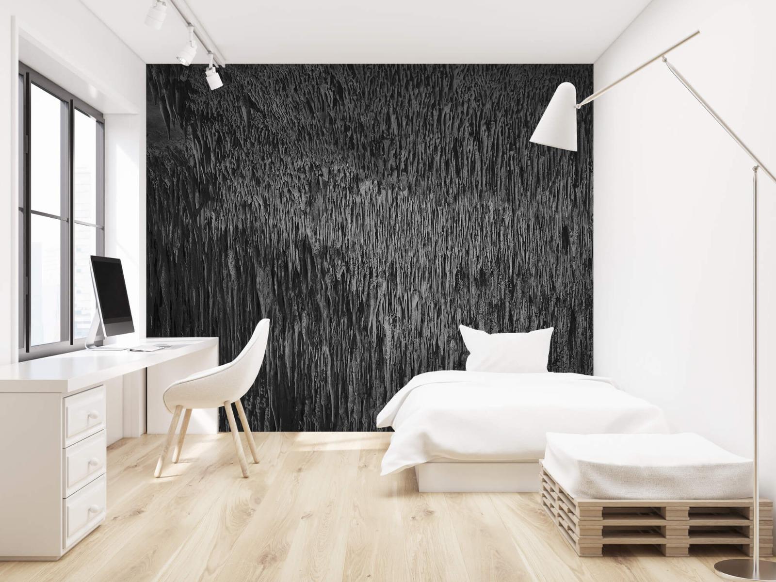 Zwart Wit behang - Druipstenen - Kantoor 22