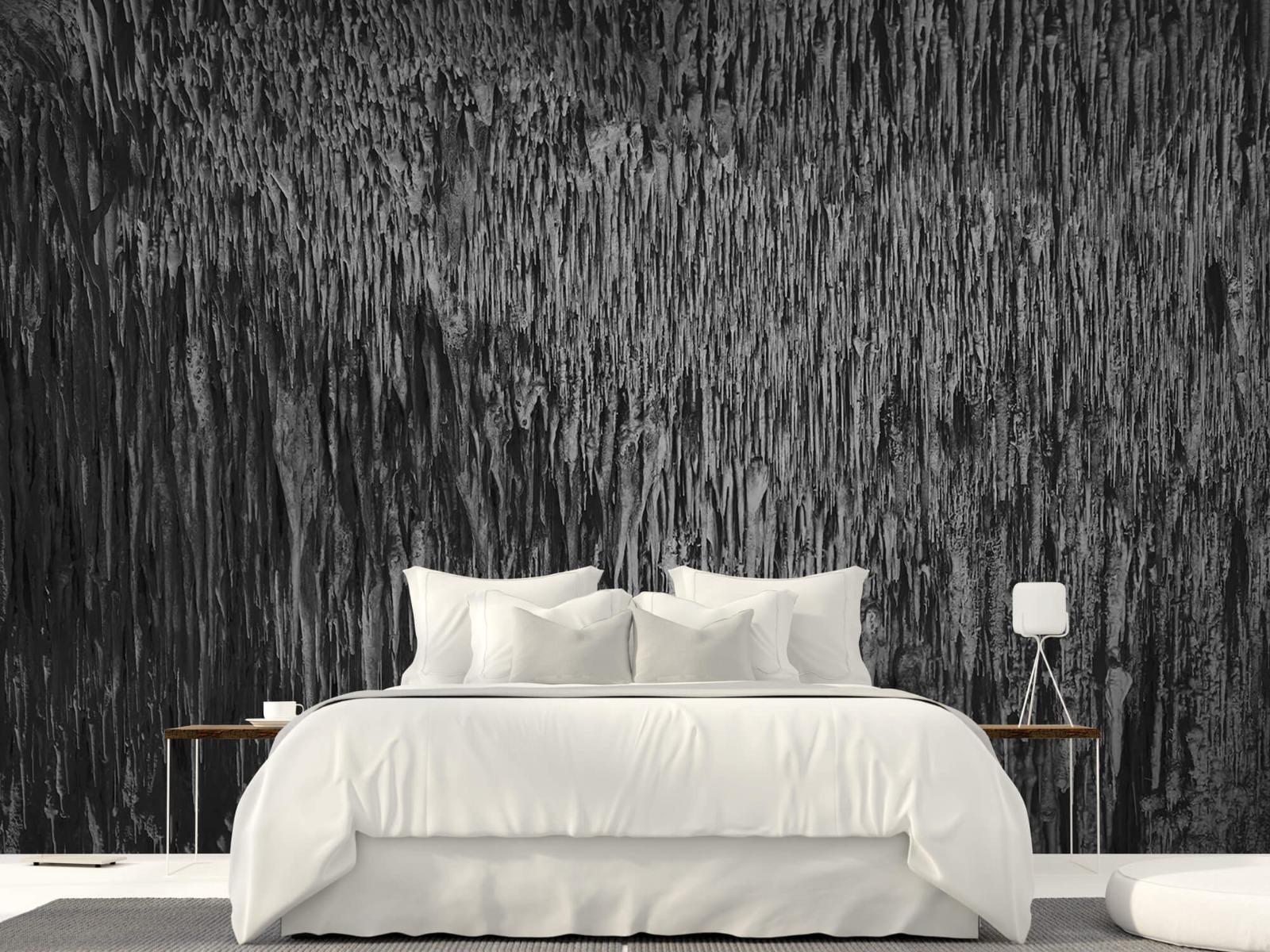 Zwart Wit behang - Druipstenen - Kantoor 23
