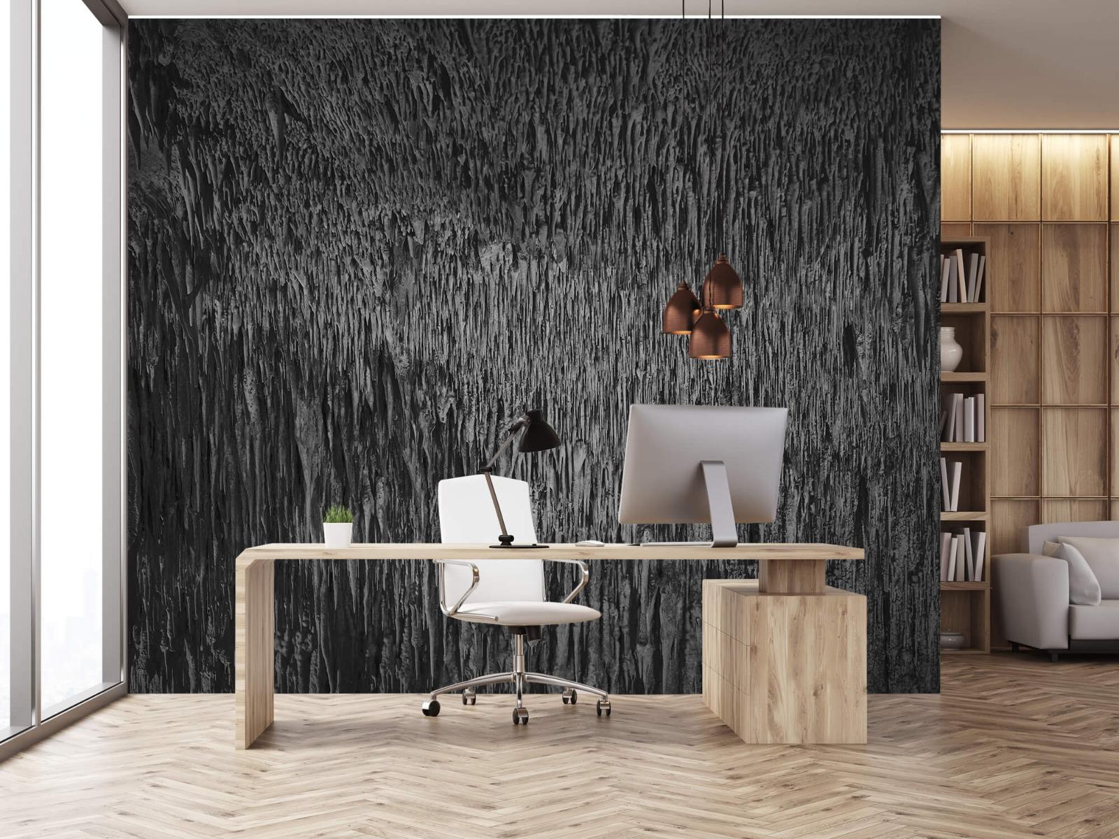 Zwart Wit behang - Druipstenen - Kantoor 24