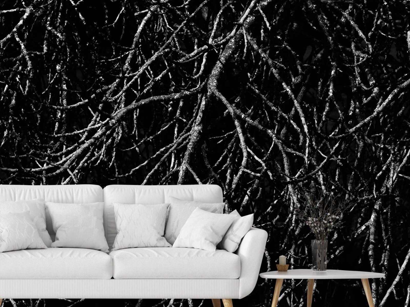 Zwart Wit behang - Boomtakken in zwart wit - Magazijn 3