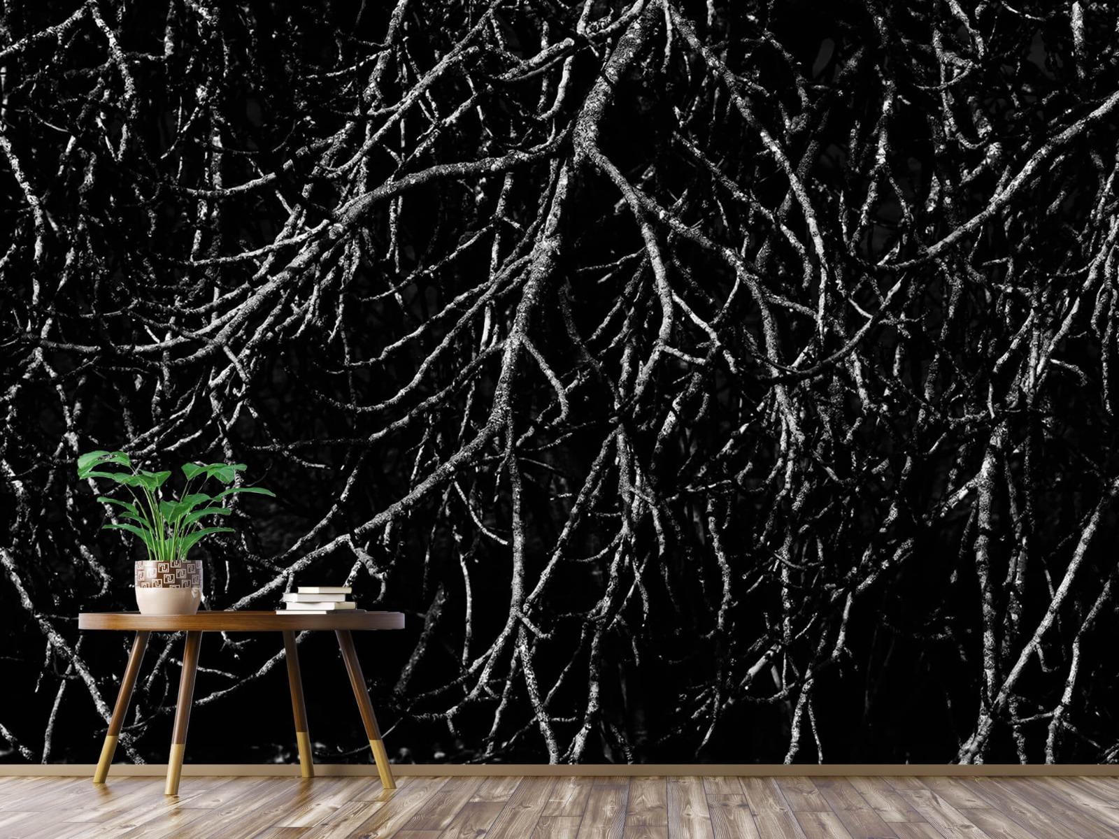 Zwart Wit behang - Boomtakken in zwart wit - Magazijn 4
