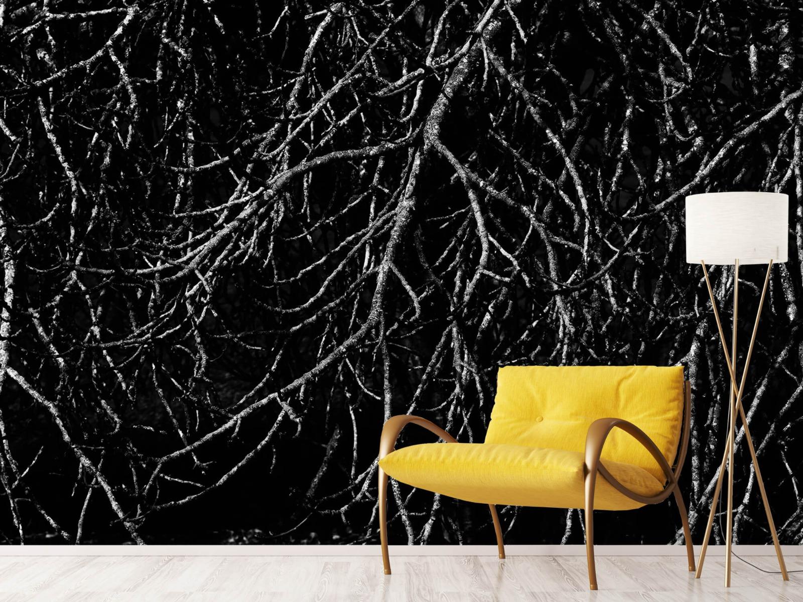 Zwart Wit behang - Boomtakken in zwart wit - Magazijn 11