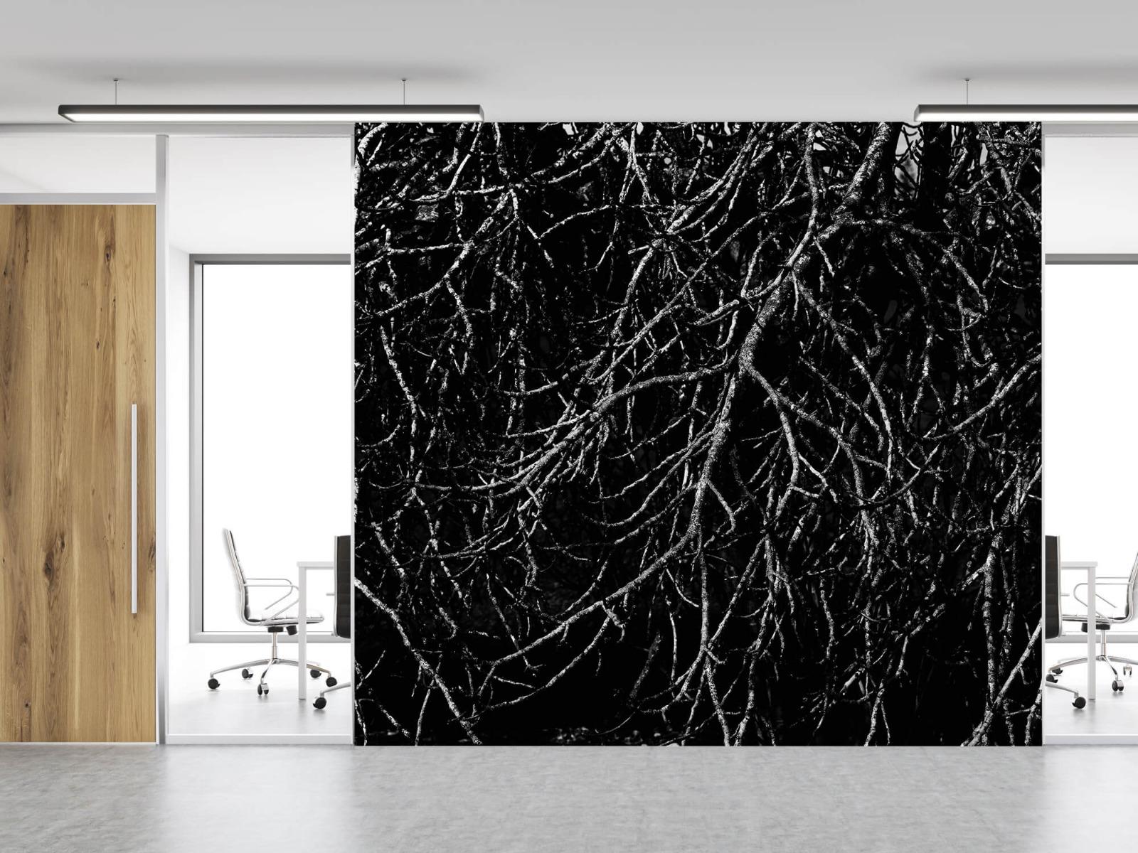 Zwart Wit behang - Boomtakken in zwart wit - Magazijn 12