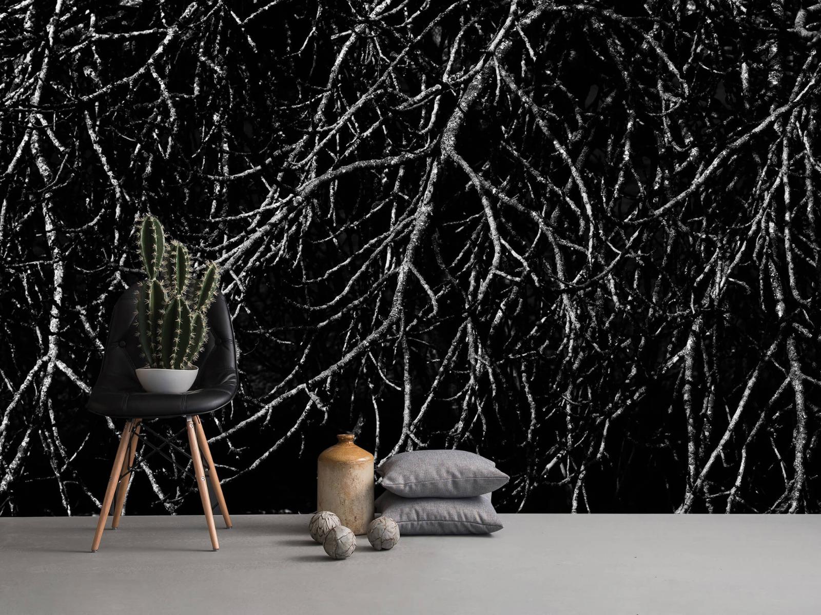 Zwart Wit behang - Boomtakken in zwart wit - Magazijn 14