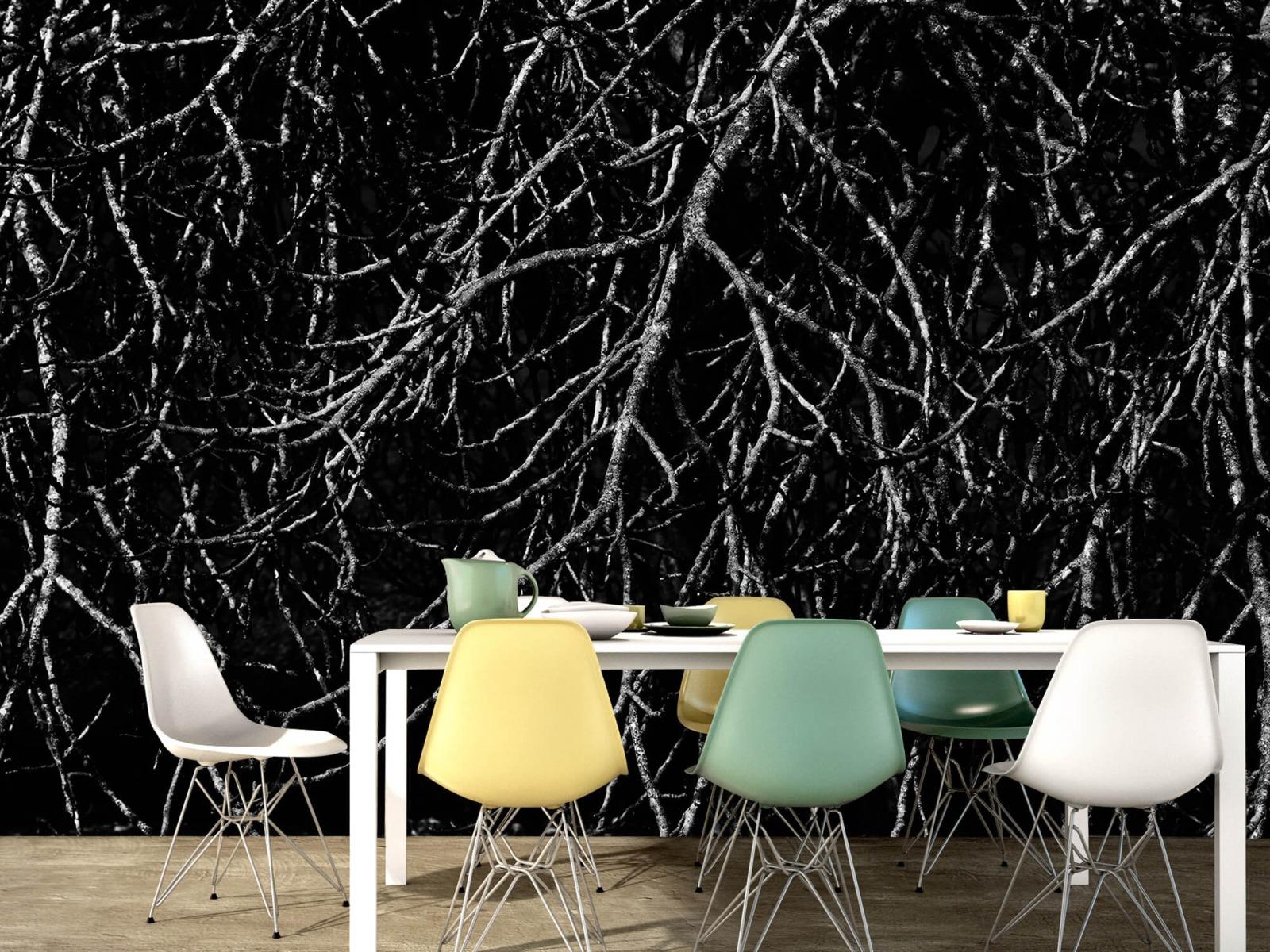 Zwart Wit behang - Boomtakken in zwart wit - Magazijn 16