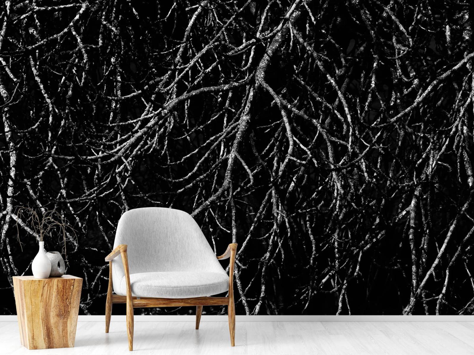 Zwart Wit behang - Boomtakken in zwart wit - Magazijn 19