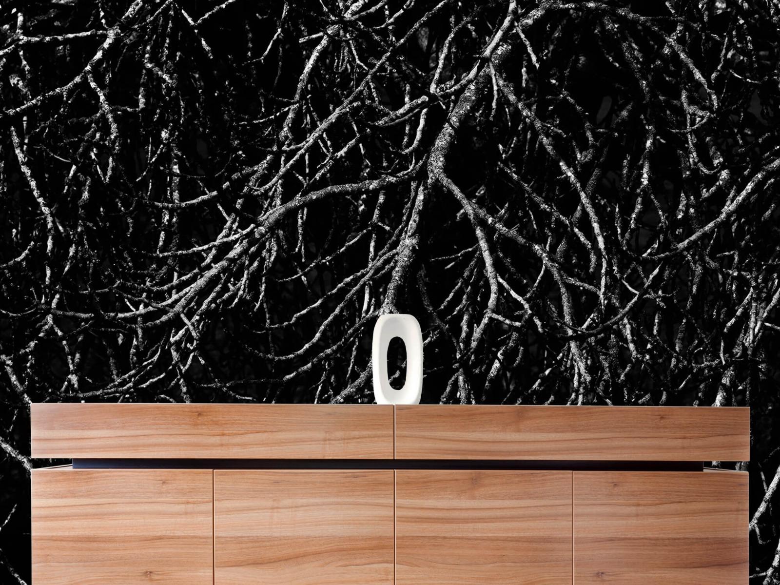 Zwart Wit behang - Boomtakken in zwart wit - Magazijn 1