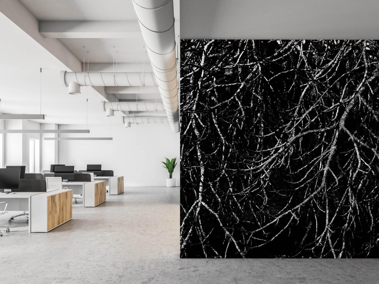 Zwart Wit behang - Boomtakken in zwart wit - Magazijn 21