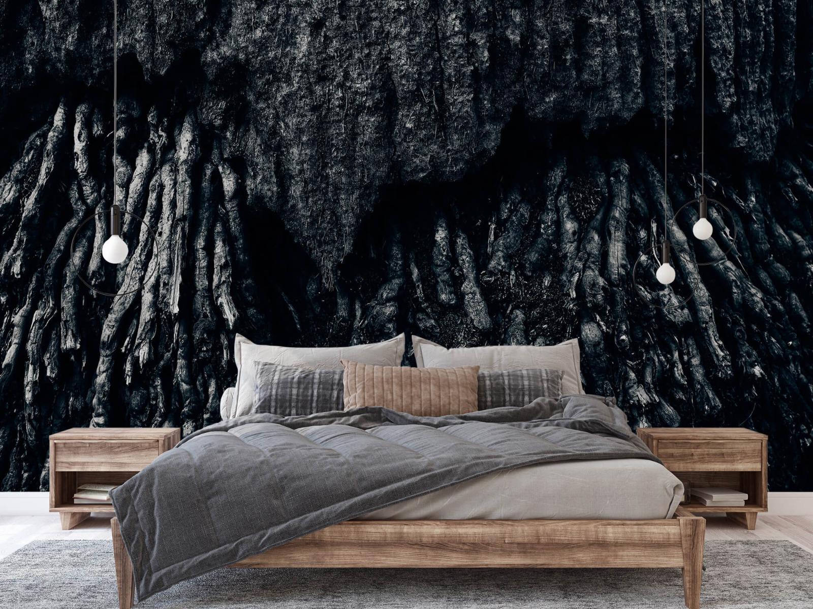 Zwart Wit behang - Boom, zwart-wit - Hal 2
