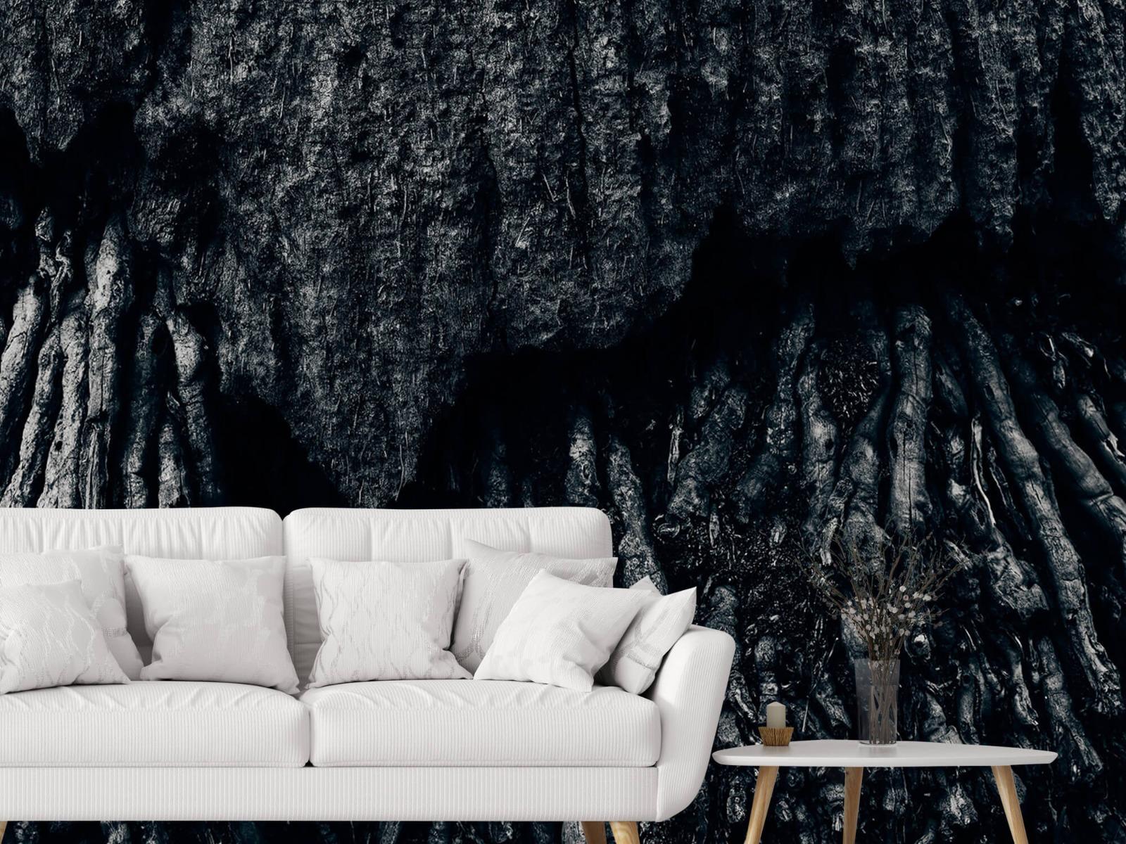 Zwart Wit behang - Boom, zwart-wit - Hal 3