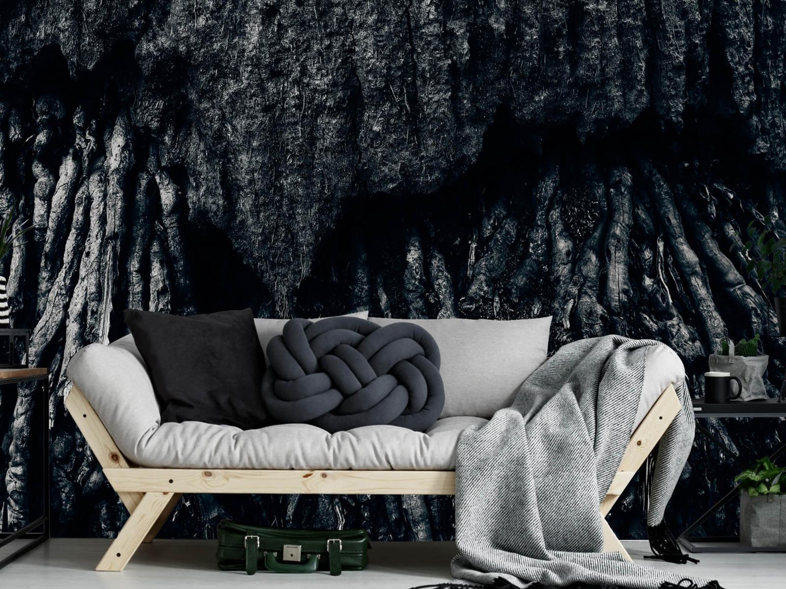 Zwart Wit behang - Boom, zwart-wit - Hal 7