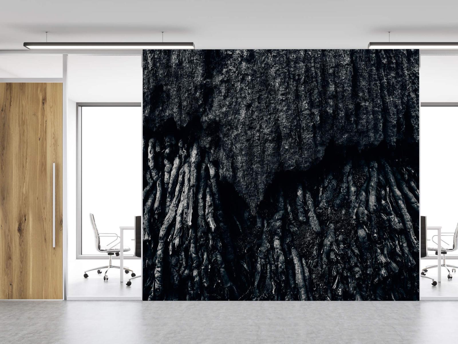 Zwart Wit behang - Boom, zwart-wit - Hal 12