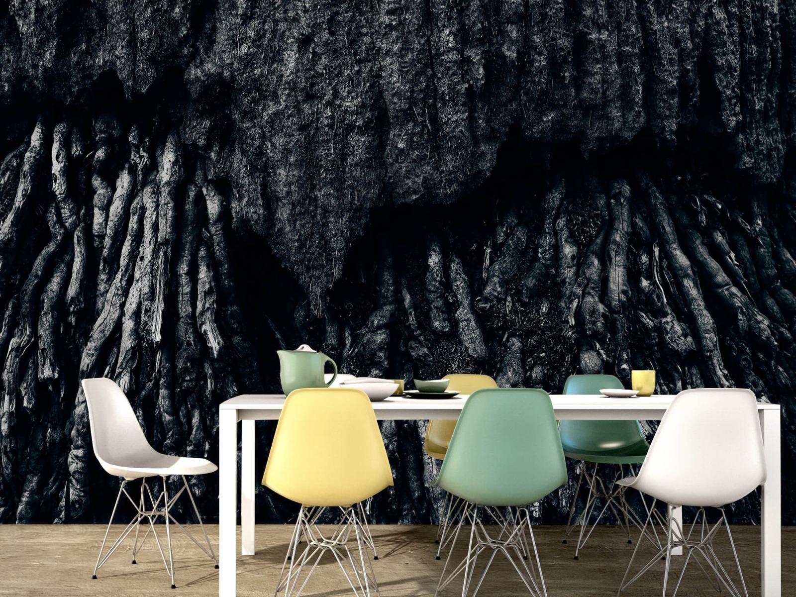 Zwart Wit behang - Boom, zwart-wit - Hal 15