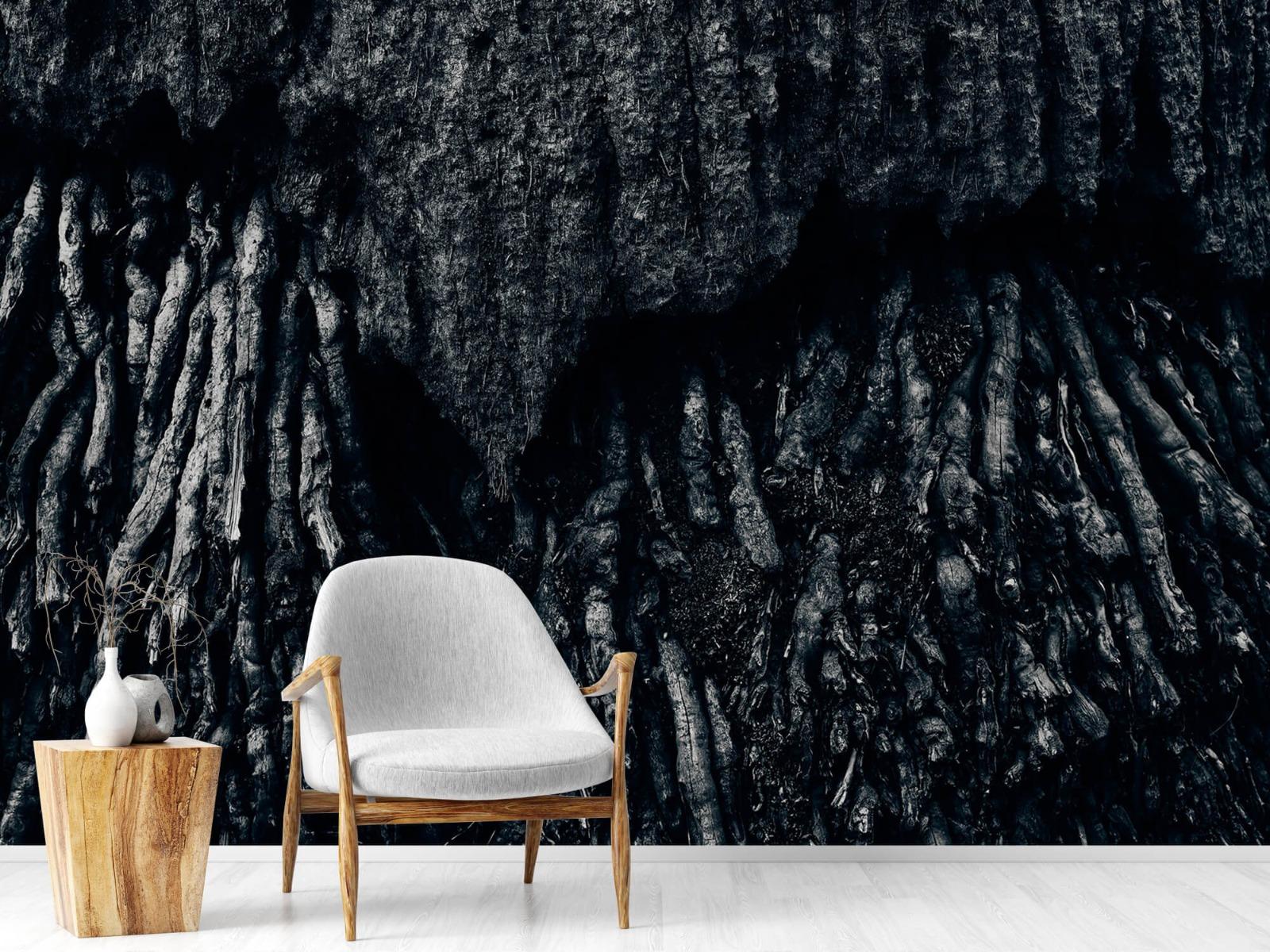 Zwart Wit behang - Boom, zwart-wit - Hal 18